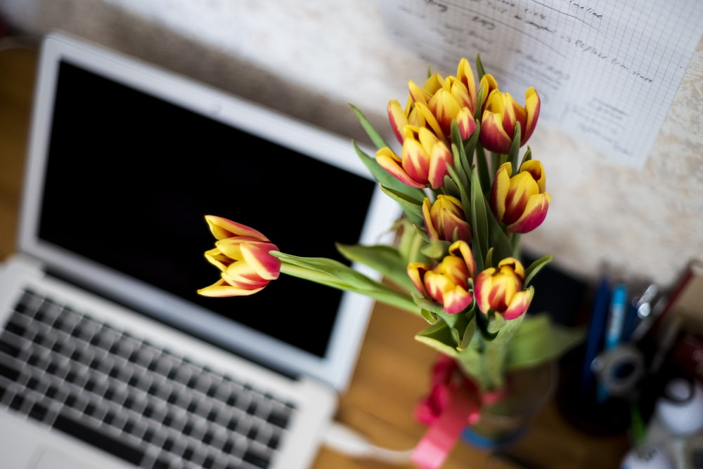 silver laptop computer and yellow-and-red petaled flowers