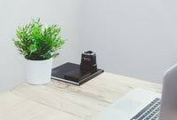 black camera on table near green plant on pot inside the room