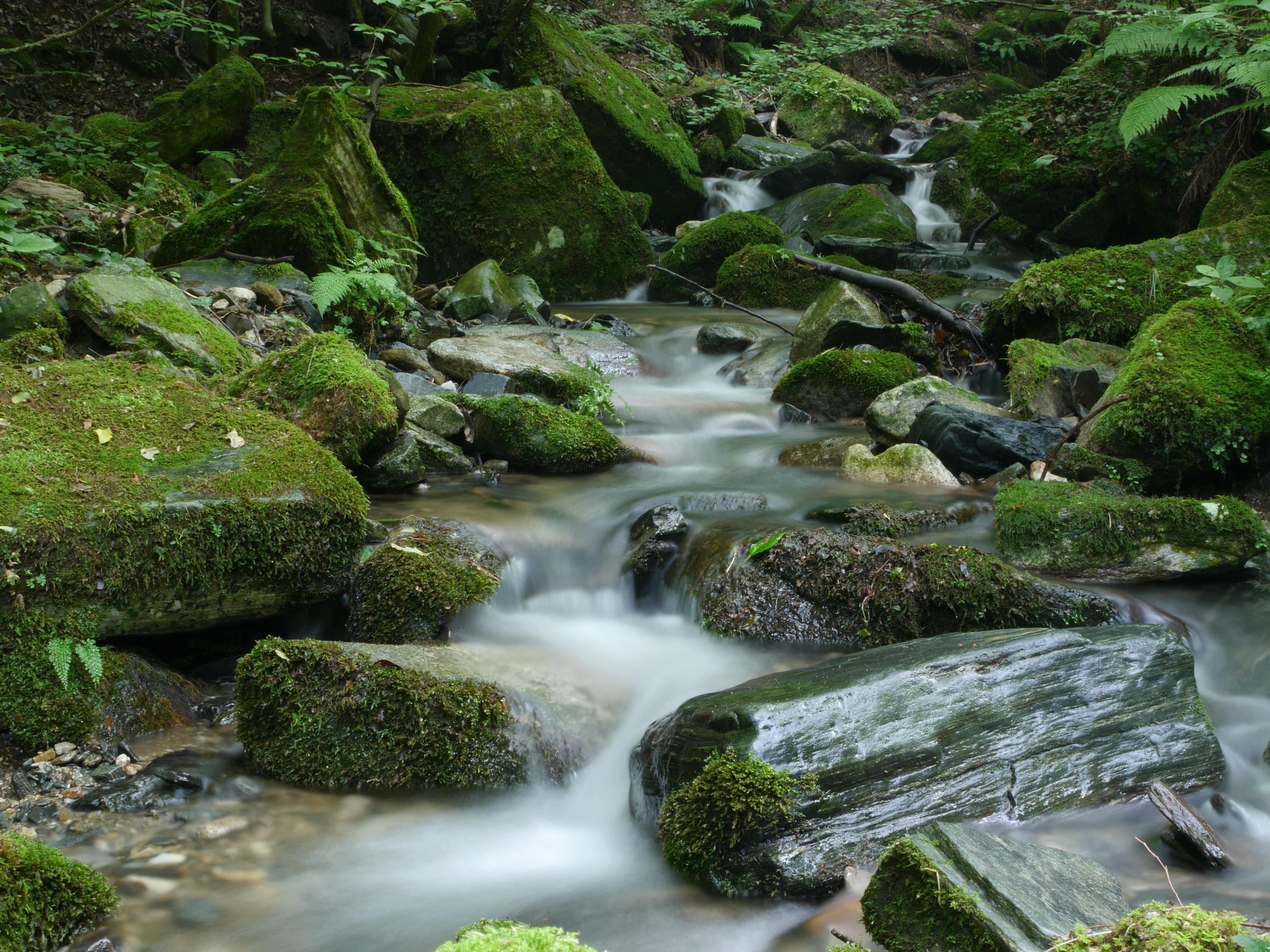 time lapse photography ofwater stream