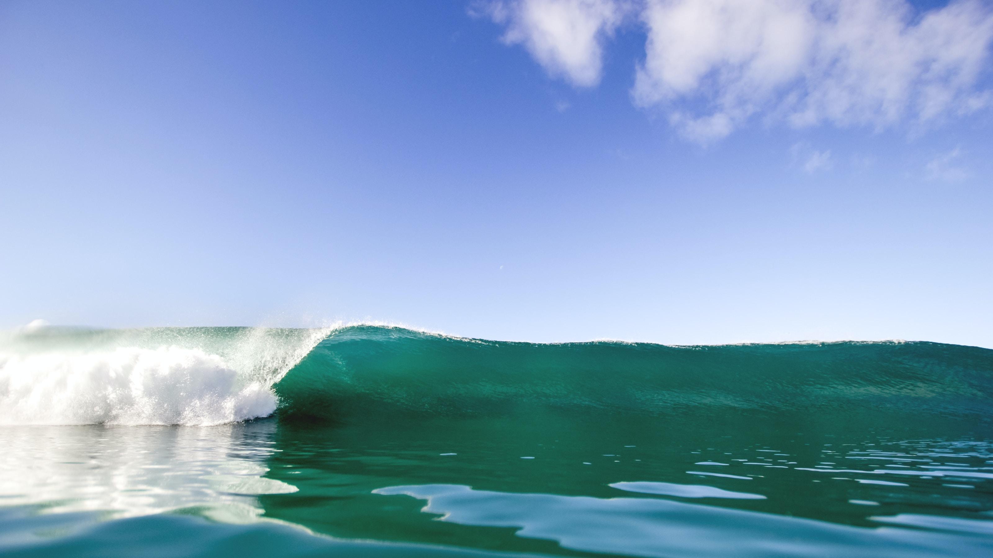 Big ocean surf wave at Torrey Pines State Beach