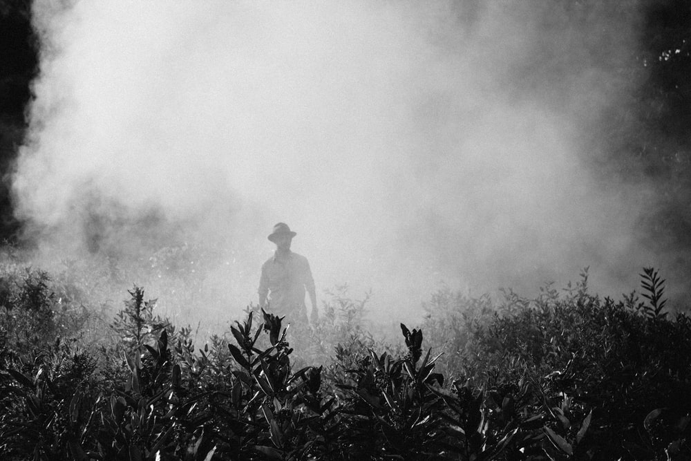 man standing in foggy area