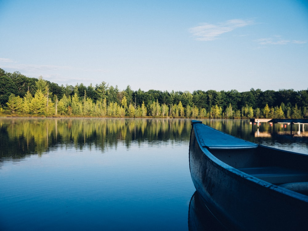 grey canoe on calm body of water near tall trees at daytime