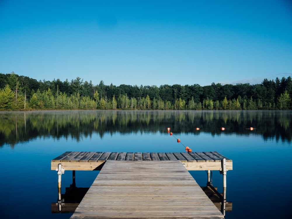 brown wooden dock near calm body of water surrounded by trees