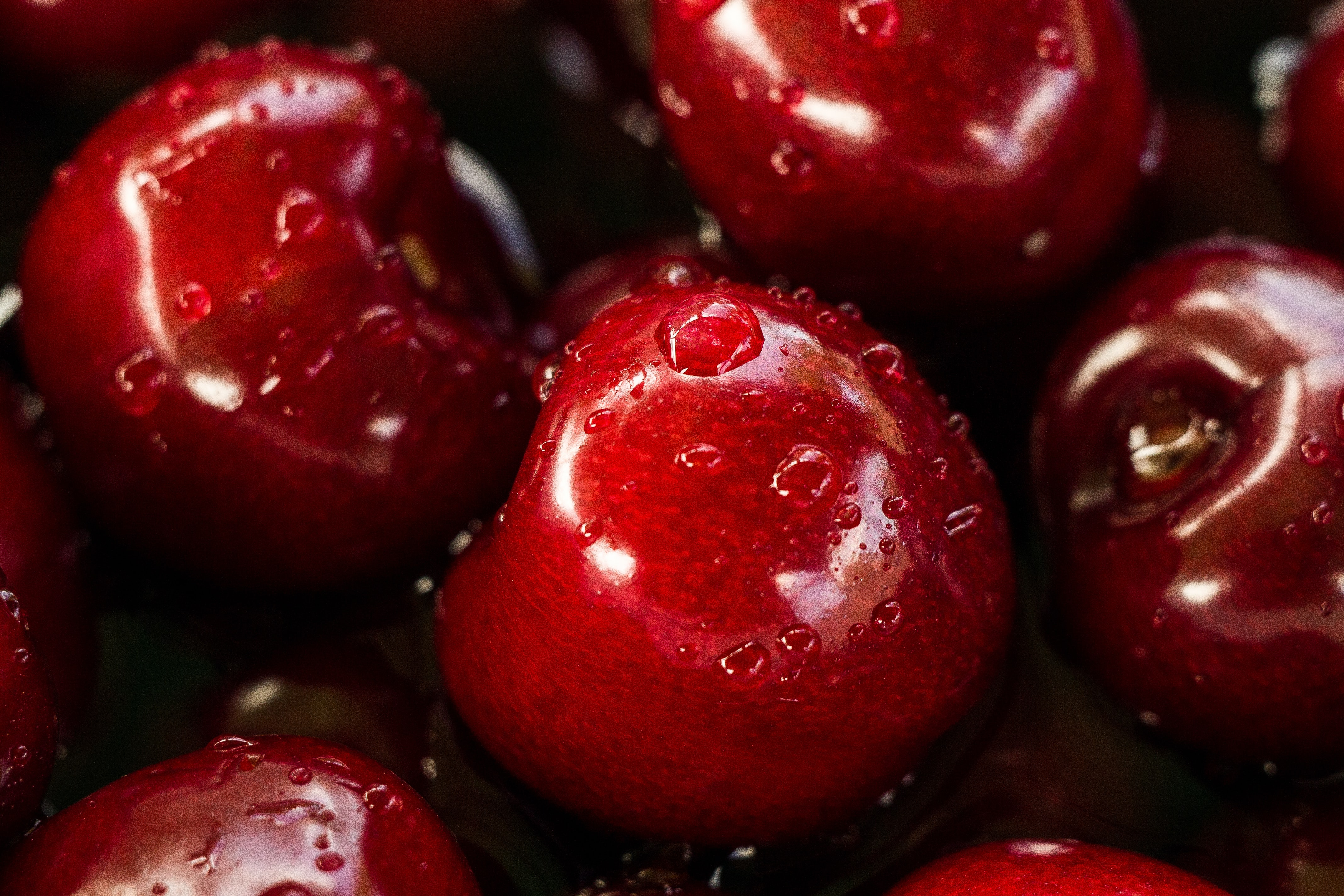 Water droplets of freshly washed red cherries
