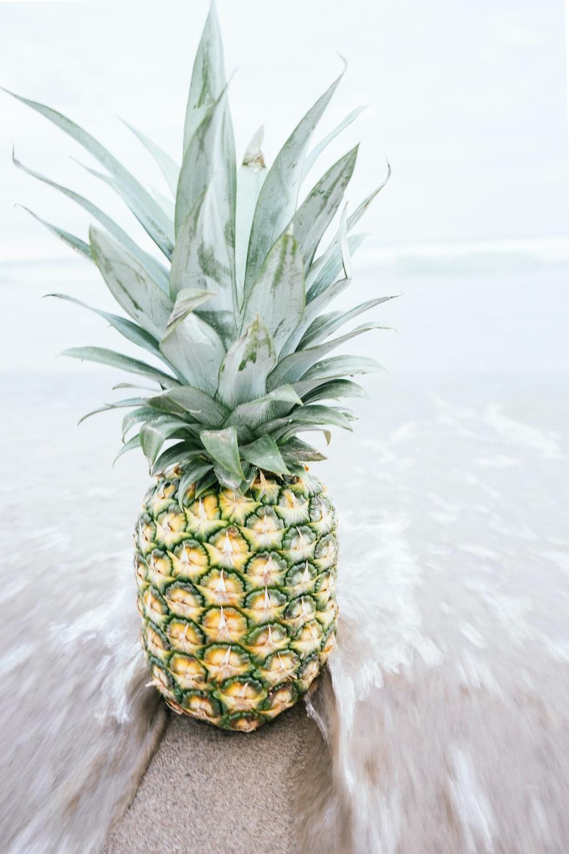 pineapple on shore