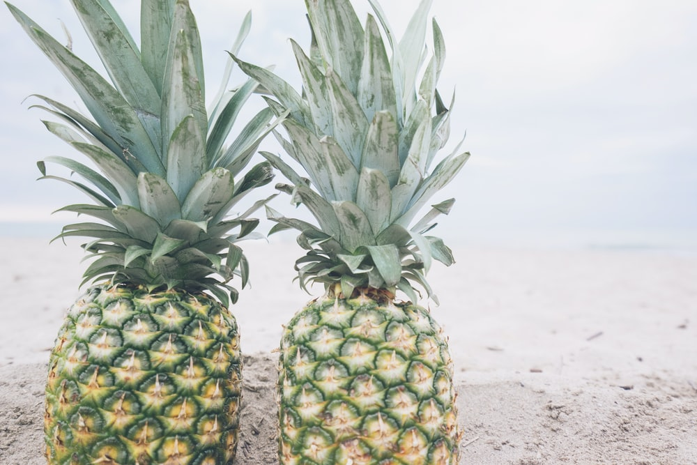 two pineapple fruits