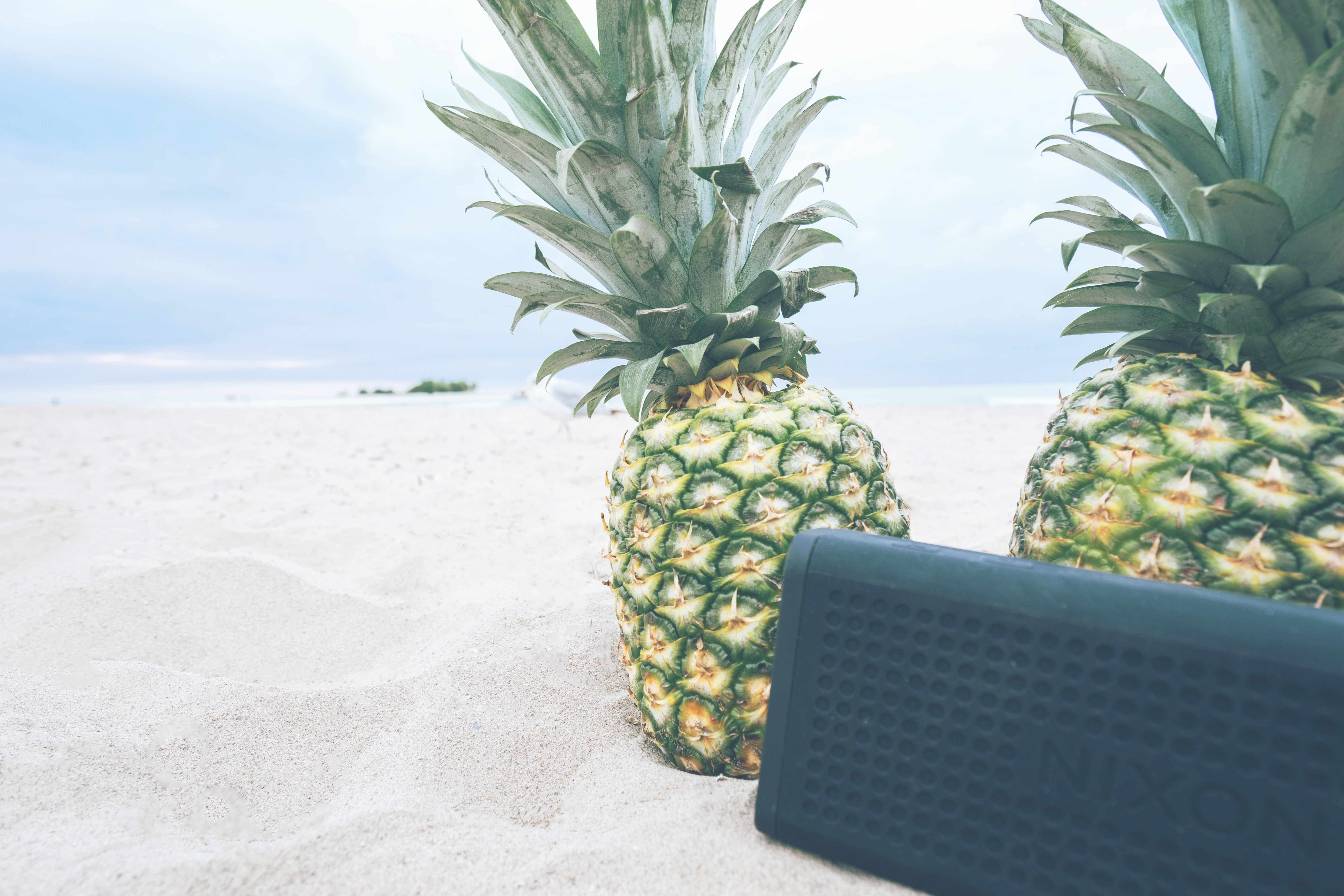 rectangular black Nixon portable Bluetooth speaker near two pineapples