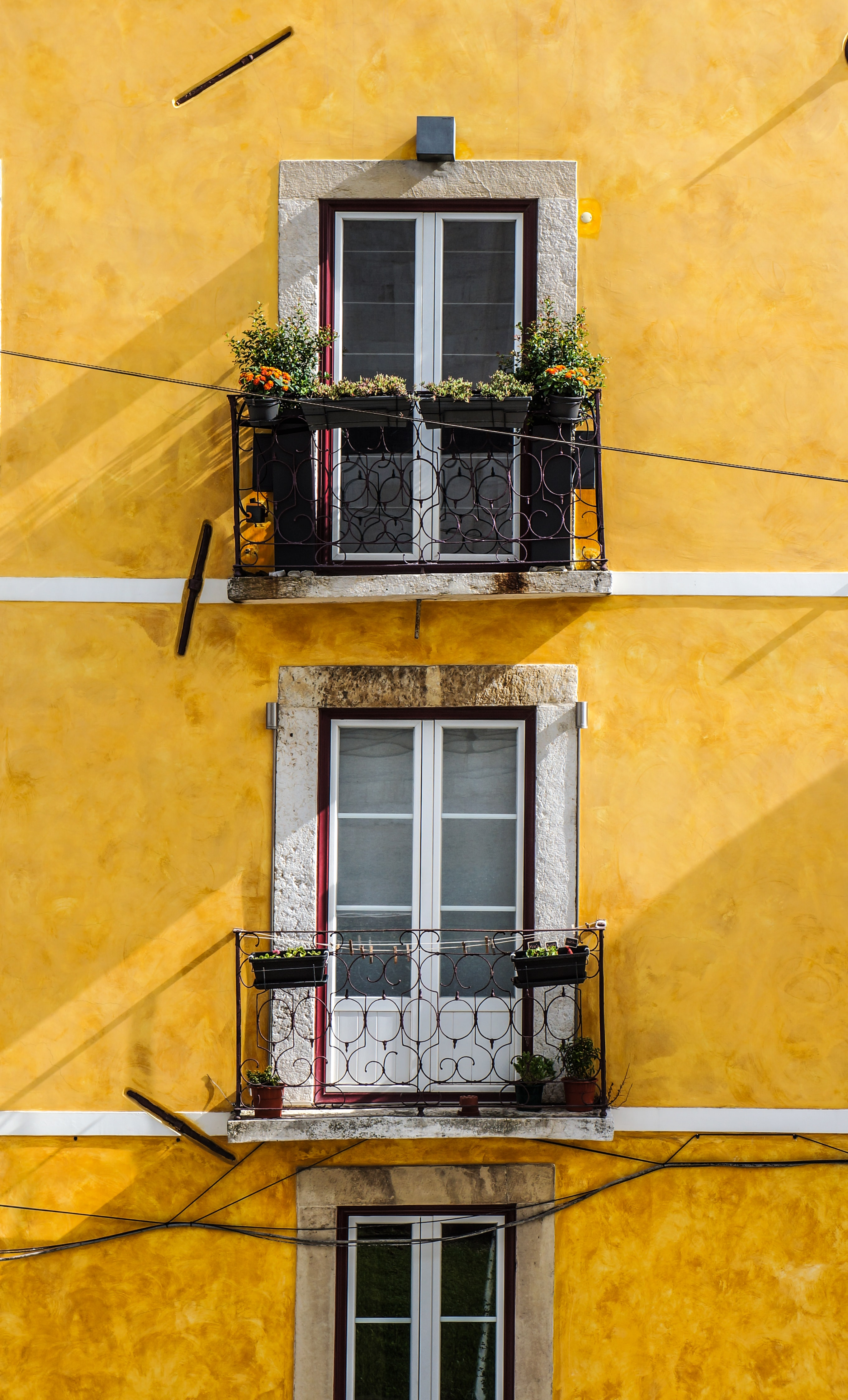 Windows and balconies of a yellow building.