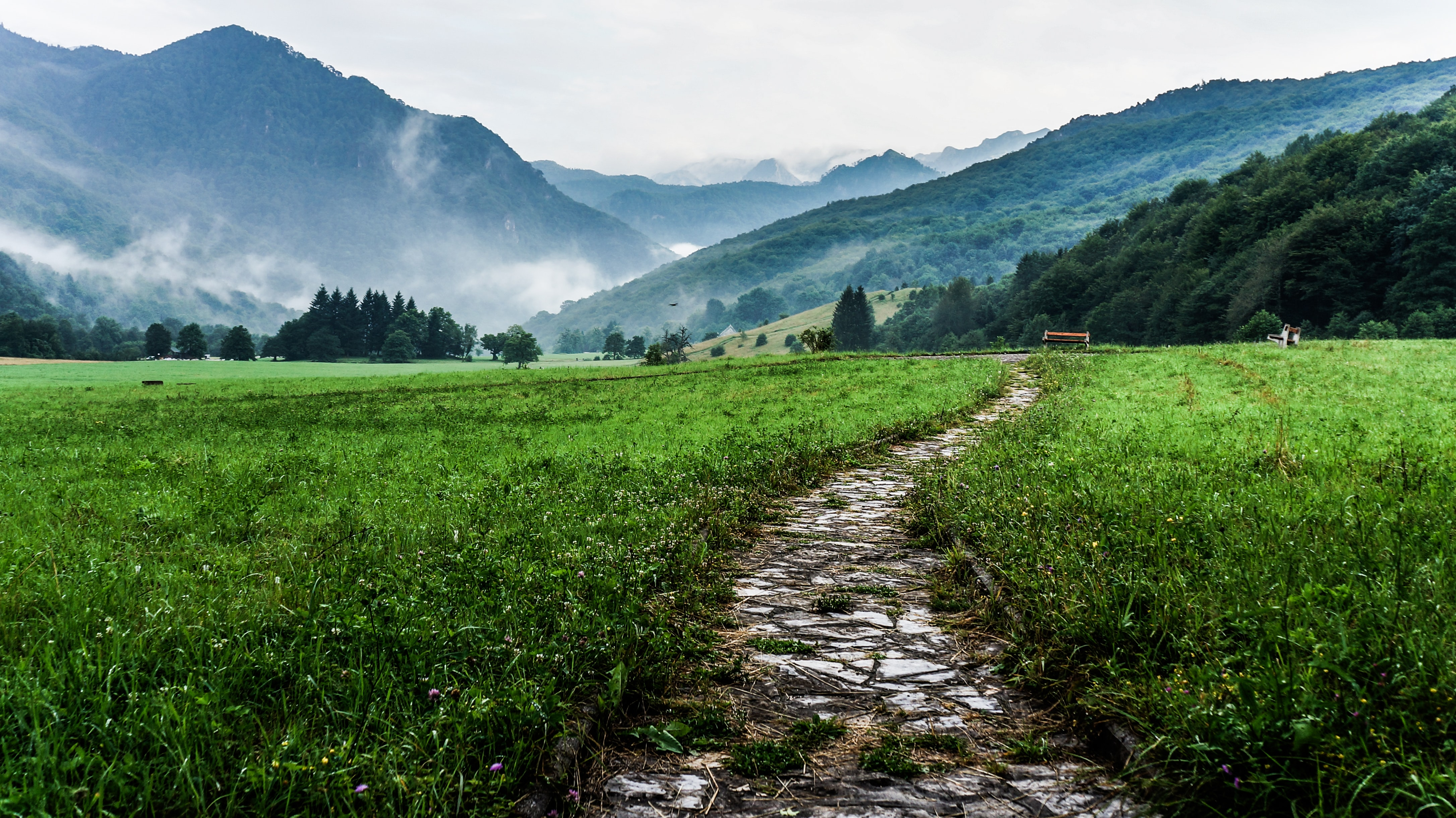 Rural stone path leads through a grassy meadow near mountains in Sutjeska