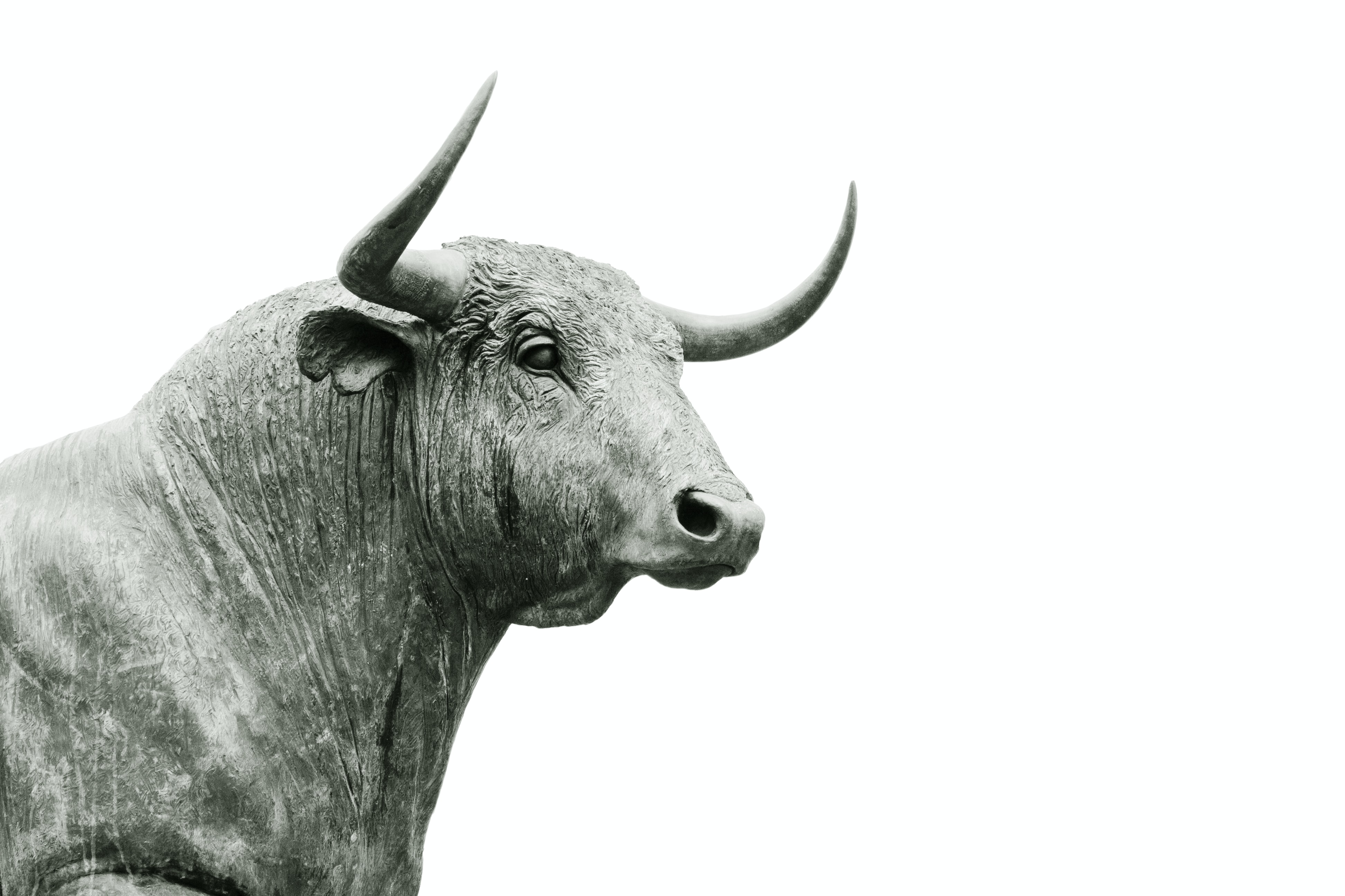 A statue of a bull against a white background