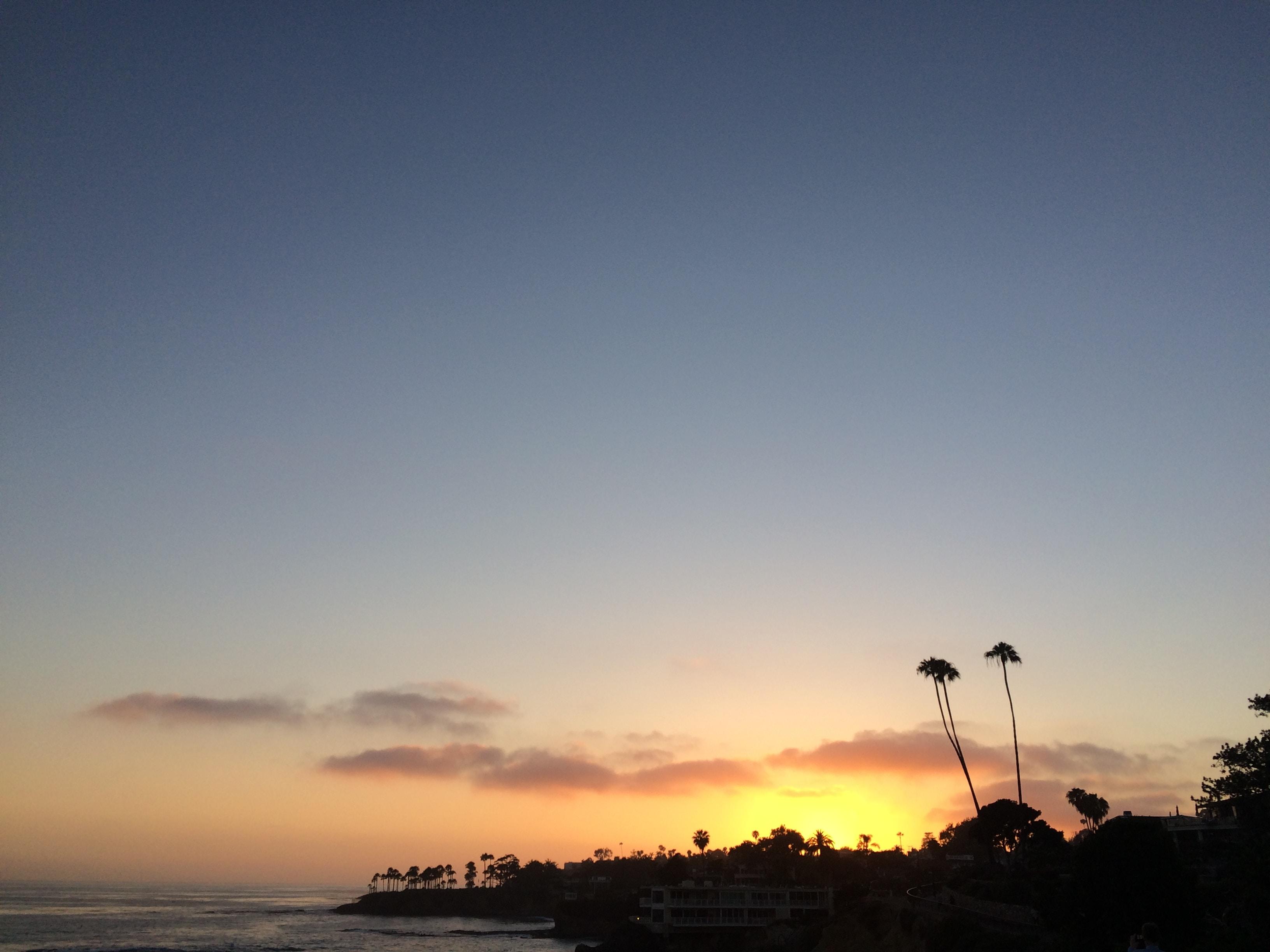 Coast silhouette in Myrtle / Cliff, Laguna Beach, California, United States at sunset