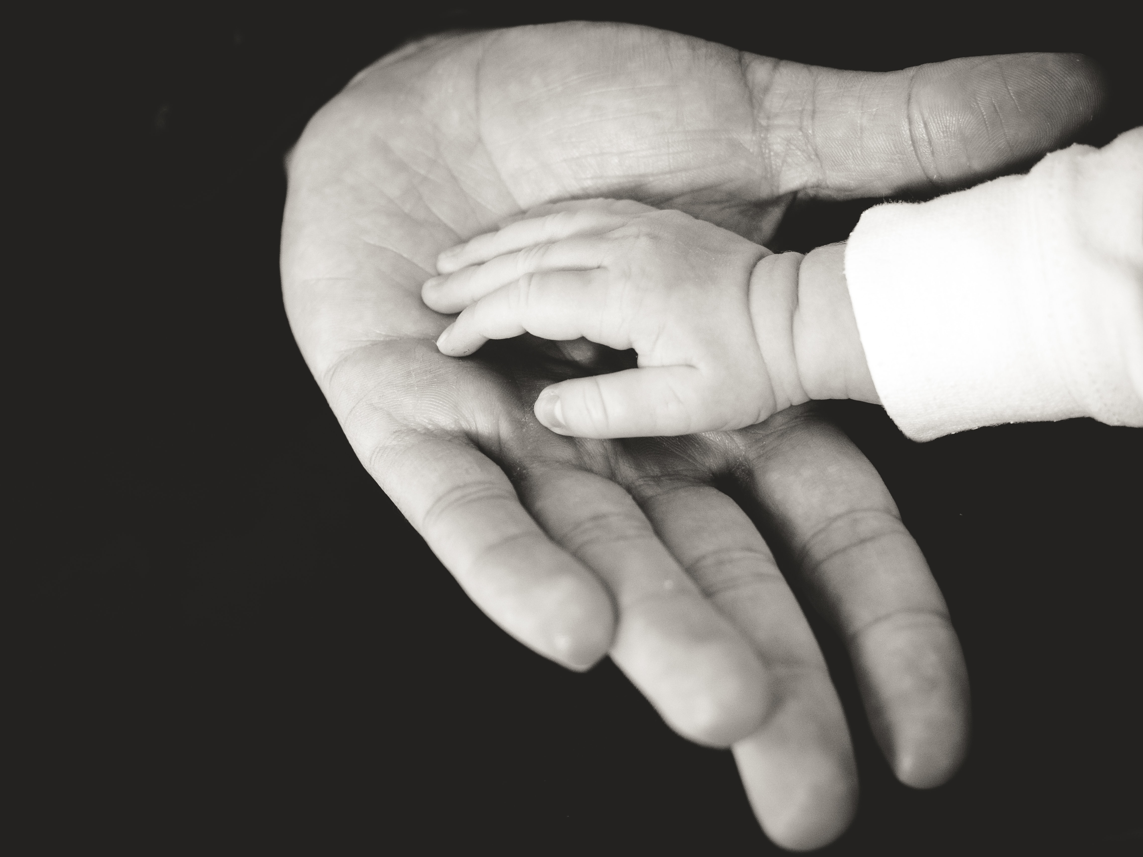 A black and white close up shot of a man's hand, with his child's hand in his palm