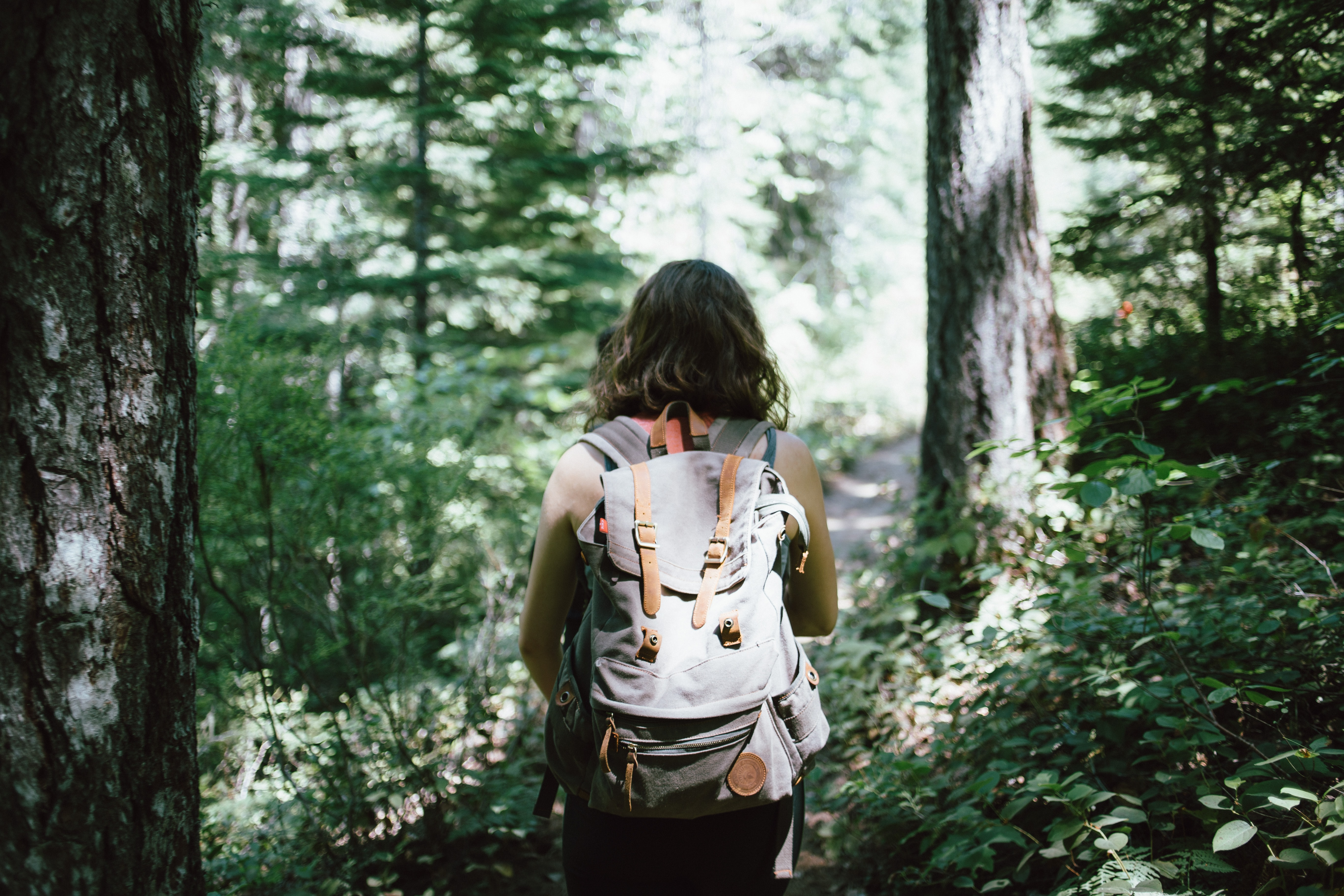 A woman with a large backpack walking through a forest