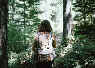 woman in sleeveless top and backpack surrounded by trees during daytime