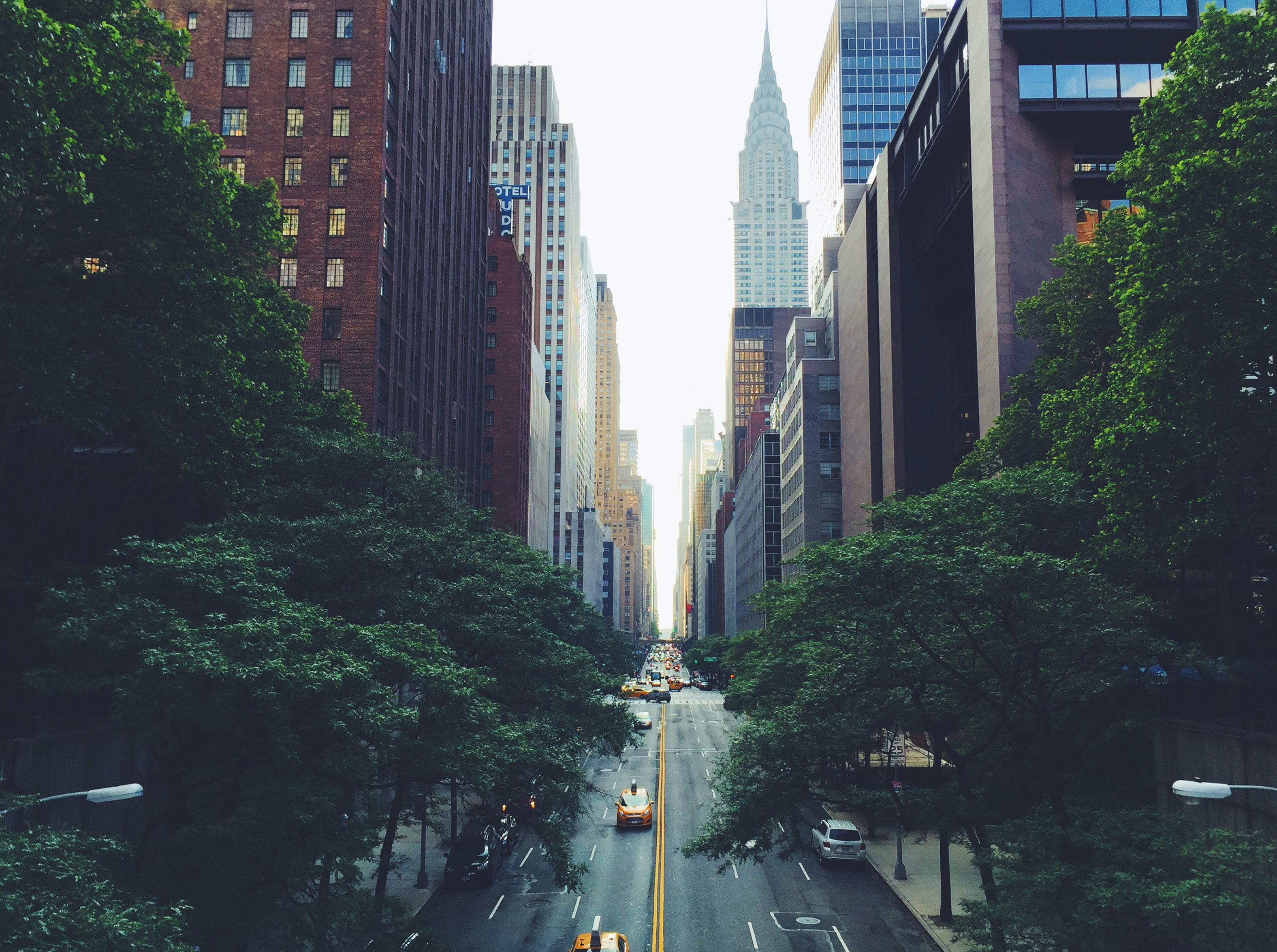 A New York City street in Midtown with trees and skyscrapers on either side