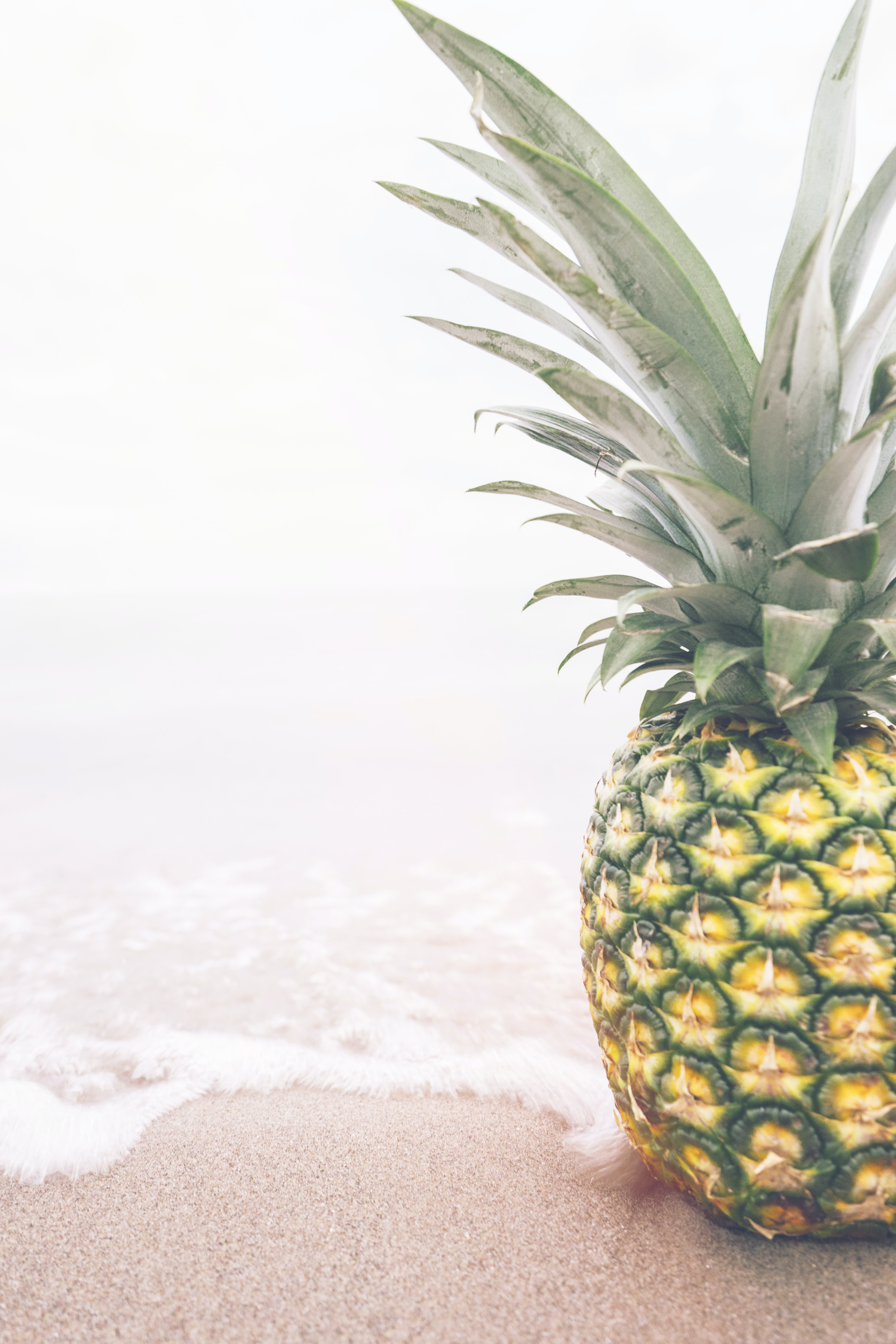 Single fresh pineapple sitting on the ocean shoreline