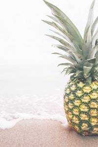 pineapple near seashore