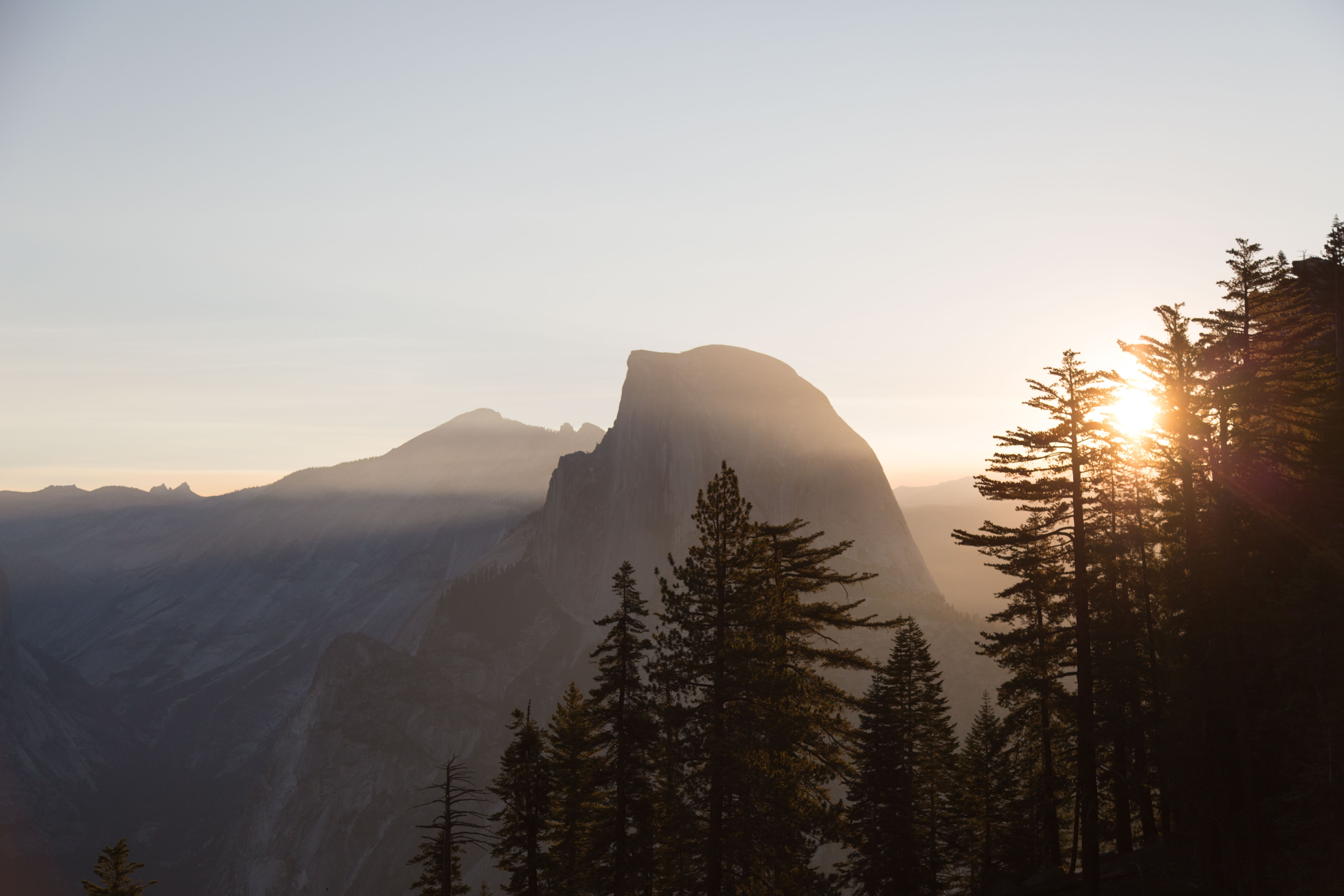 landscape photography of trees and mountain