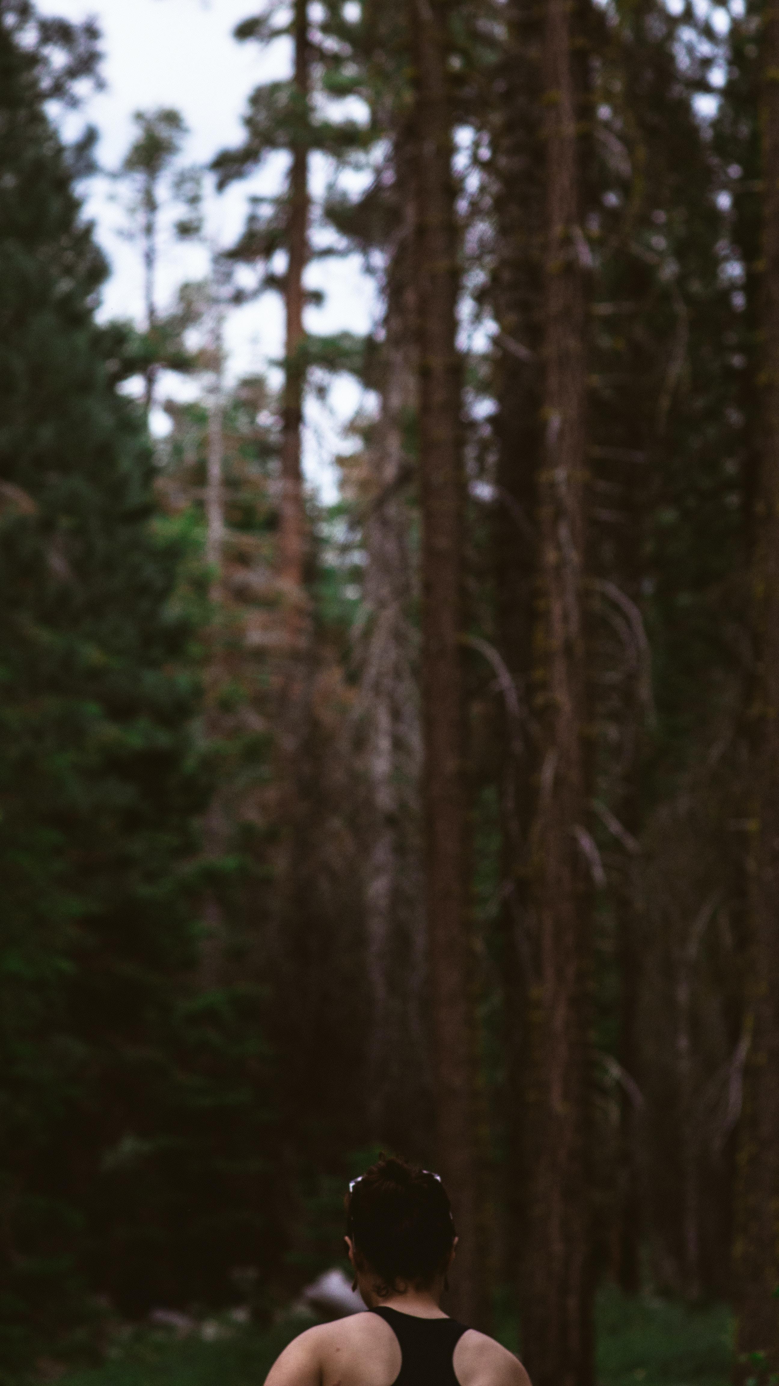 Free Unsplash photo from Matthew Dix