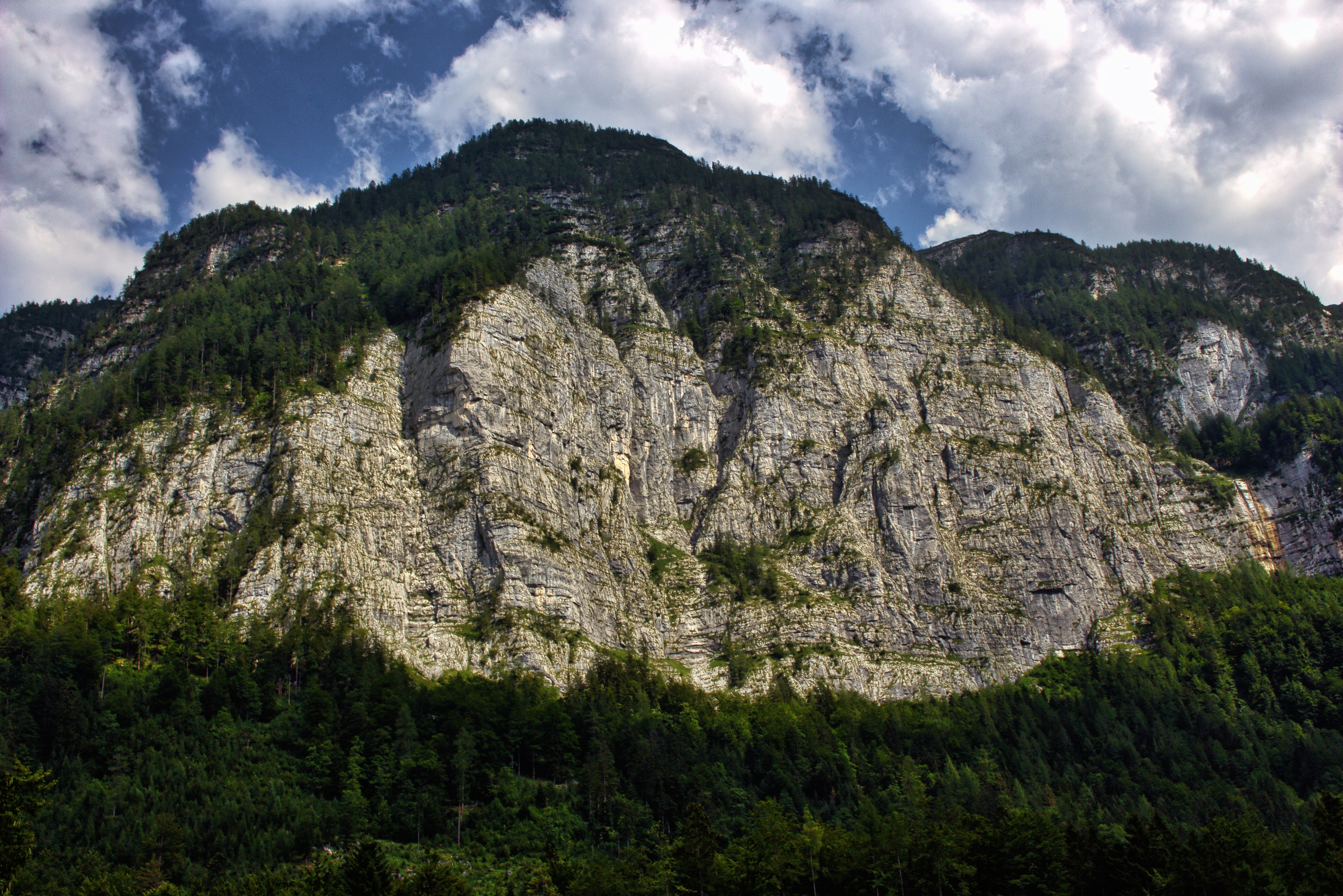 A steep rugged mountain with green woods on its top
