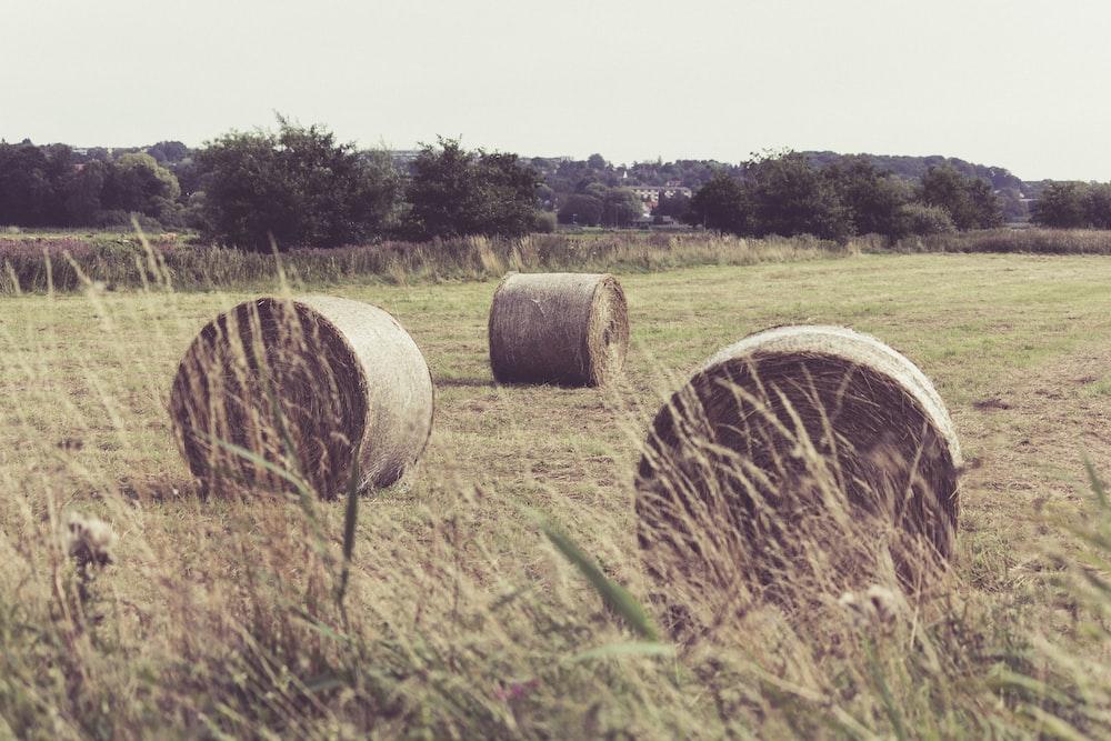 three hay stacks on field
