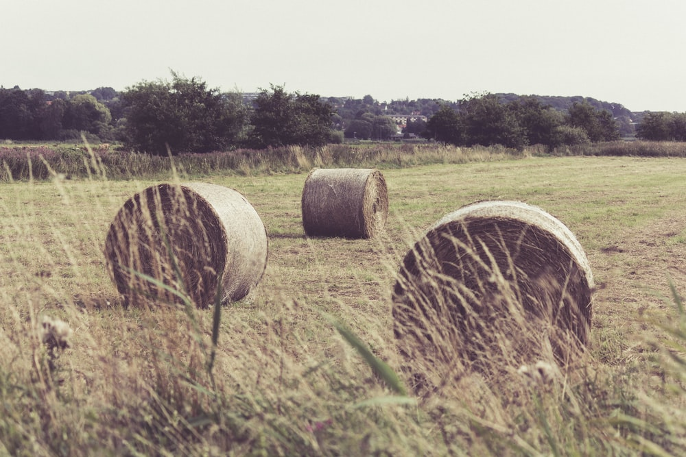 three hay stacks on field