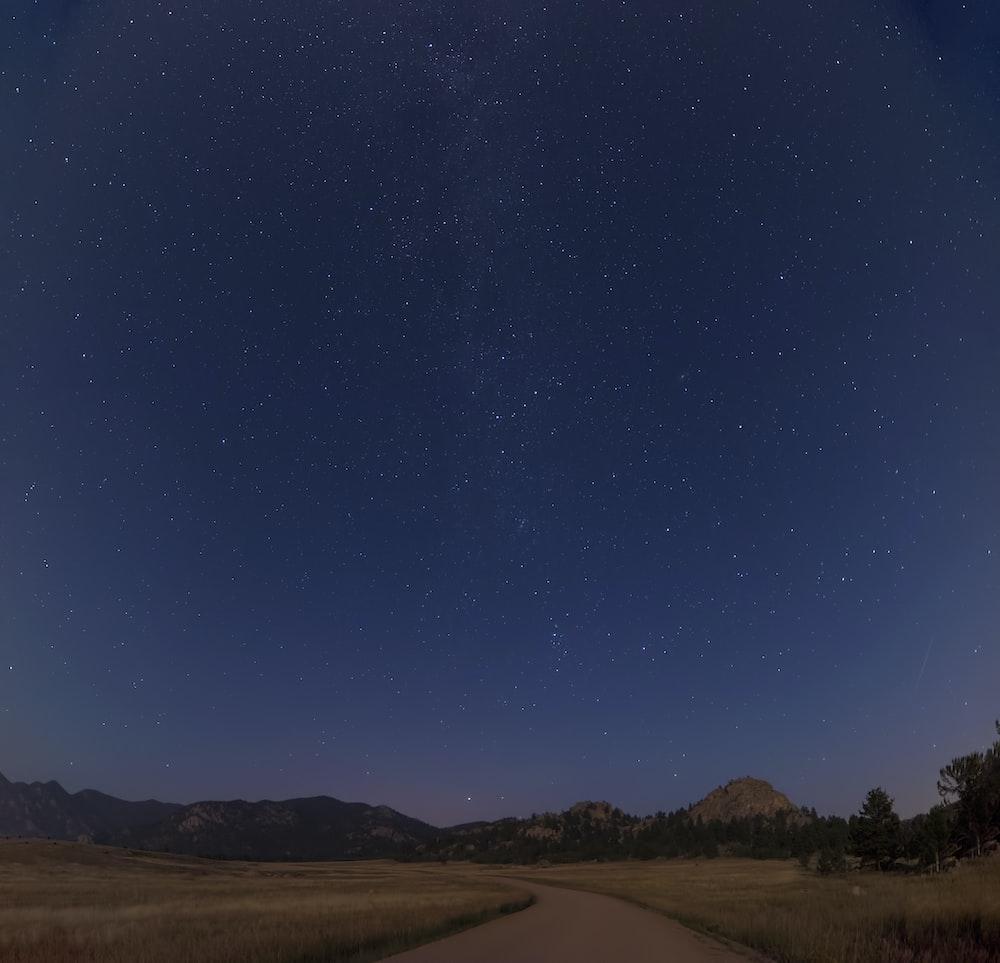 brown pathway under starry night