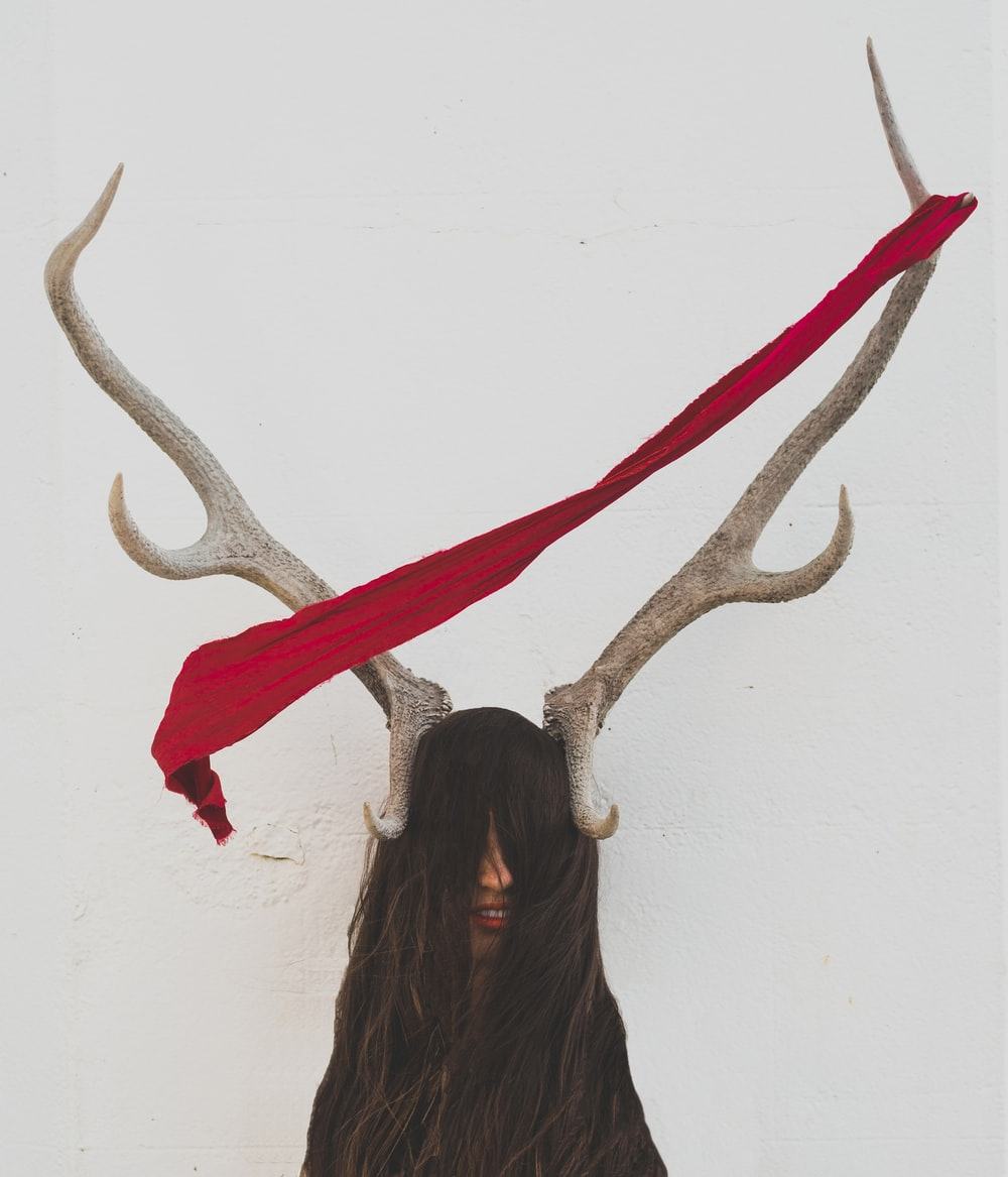 A piece of red fabric on a deer's antlers.