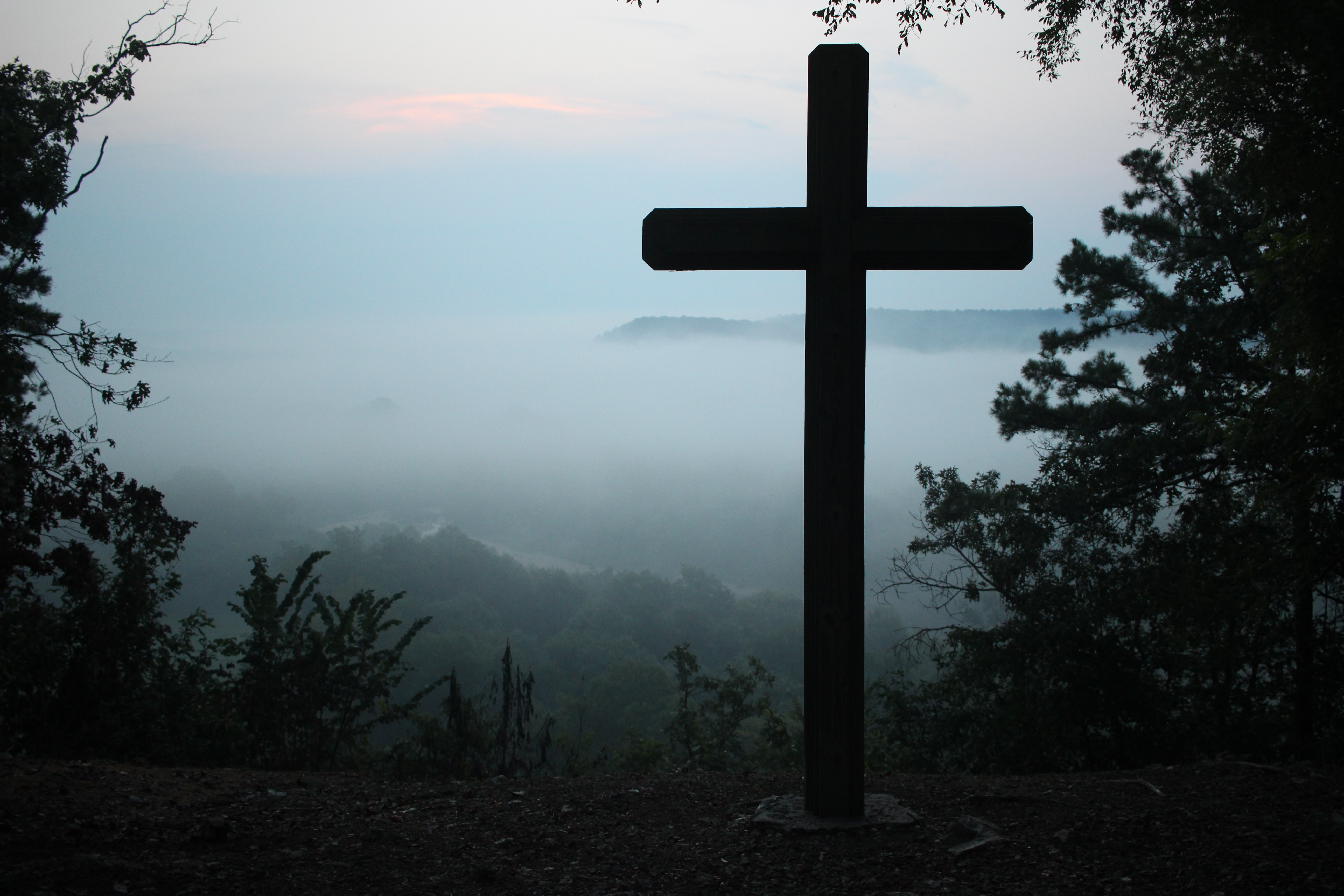 cross in dense forest with fog