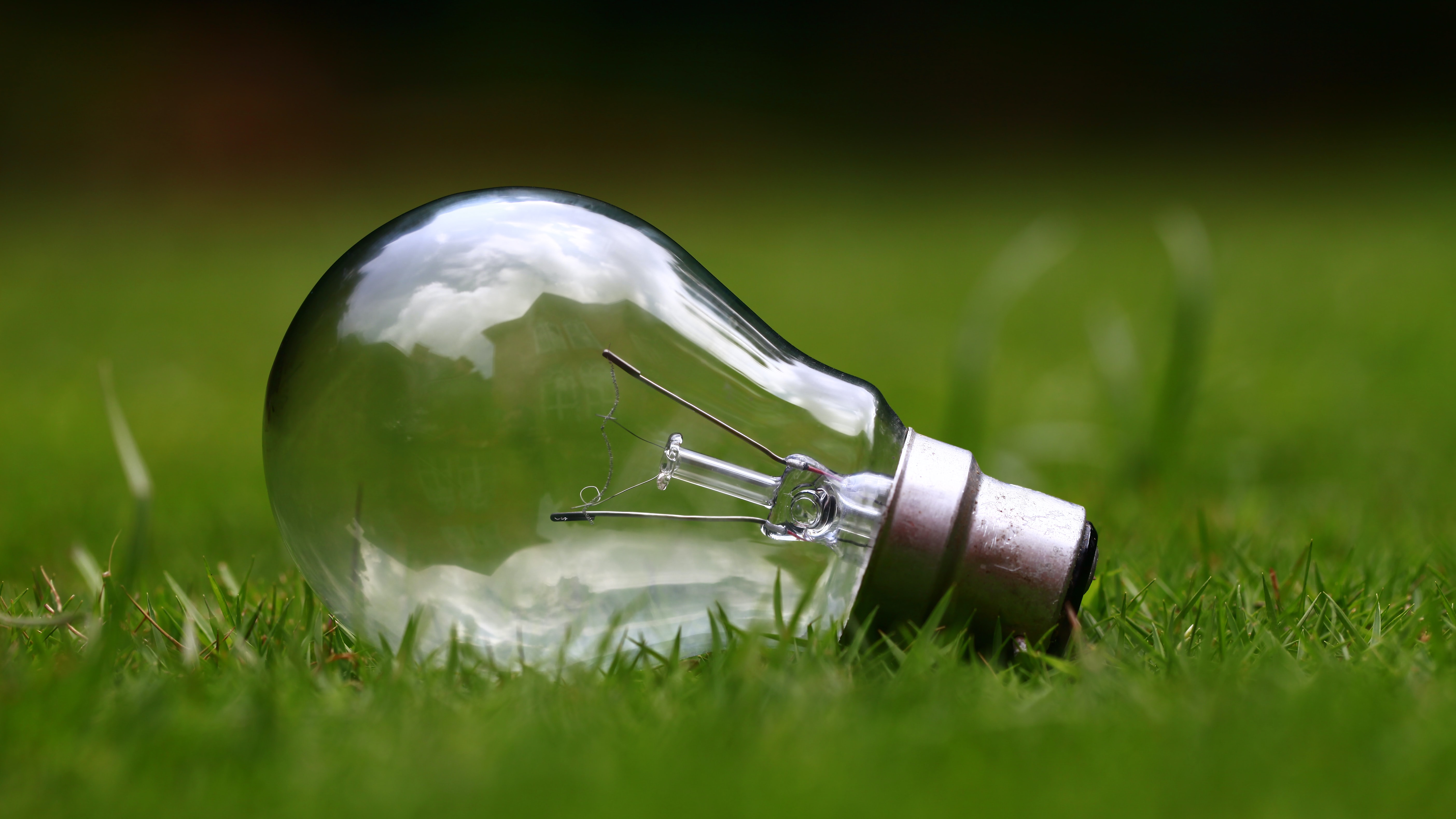 Close-up of a light bulb lying on green grass