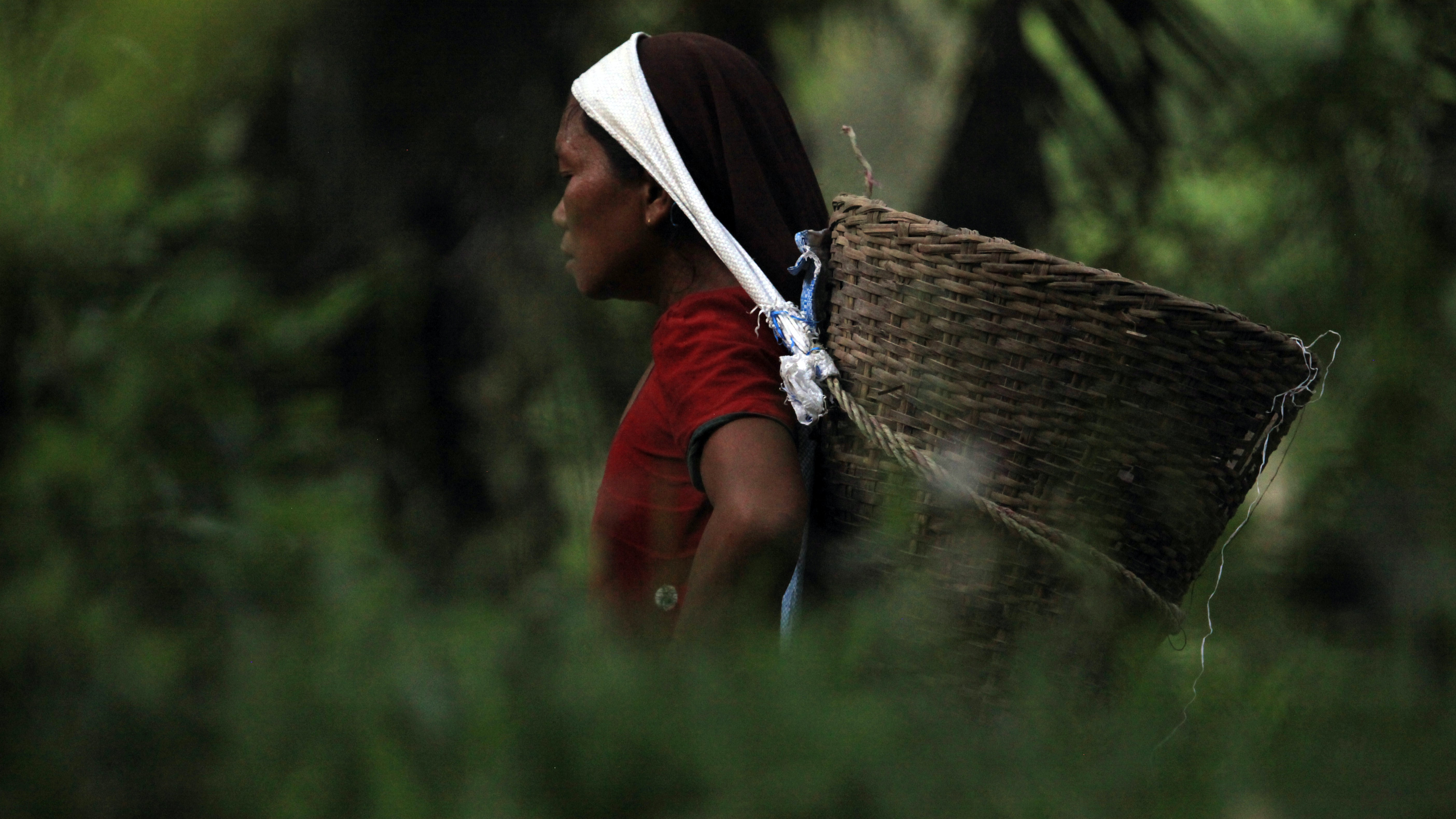 A woman standing among plants with a basket hanging from her forehead by a scarf