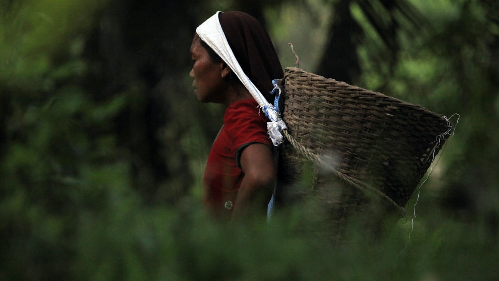 person carrying basket on her head