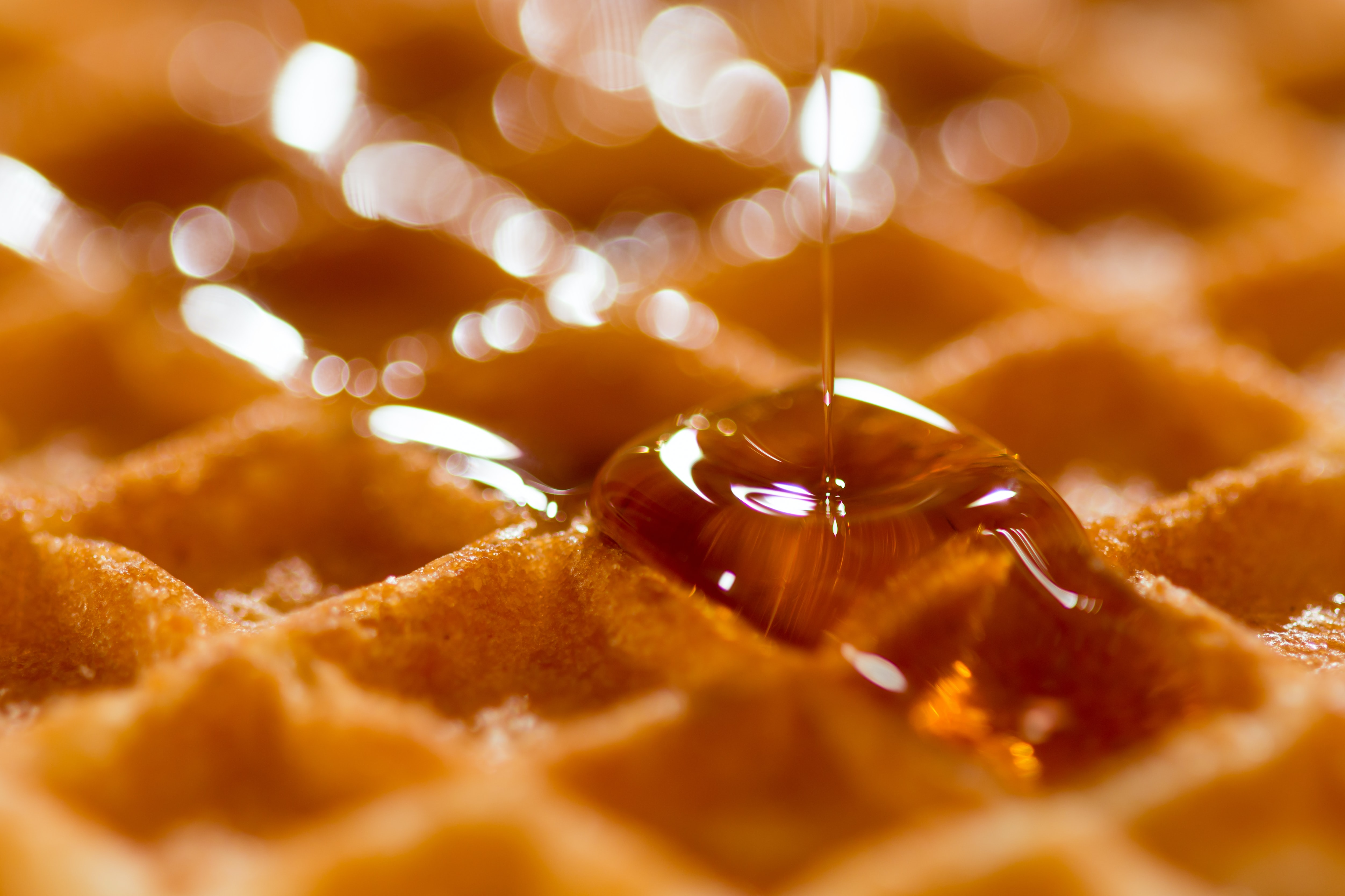 Close-up of maple syrup dripping on a waffle