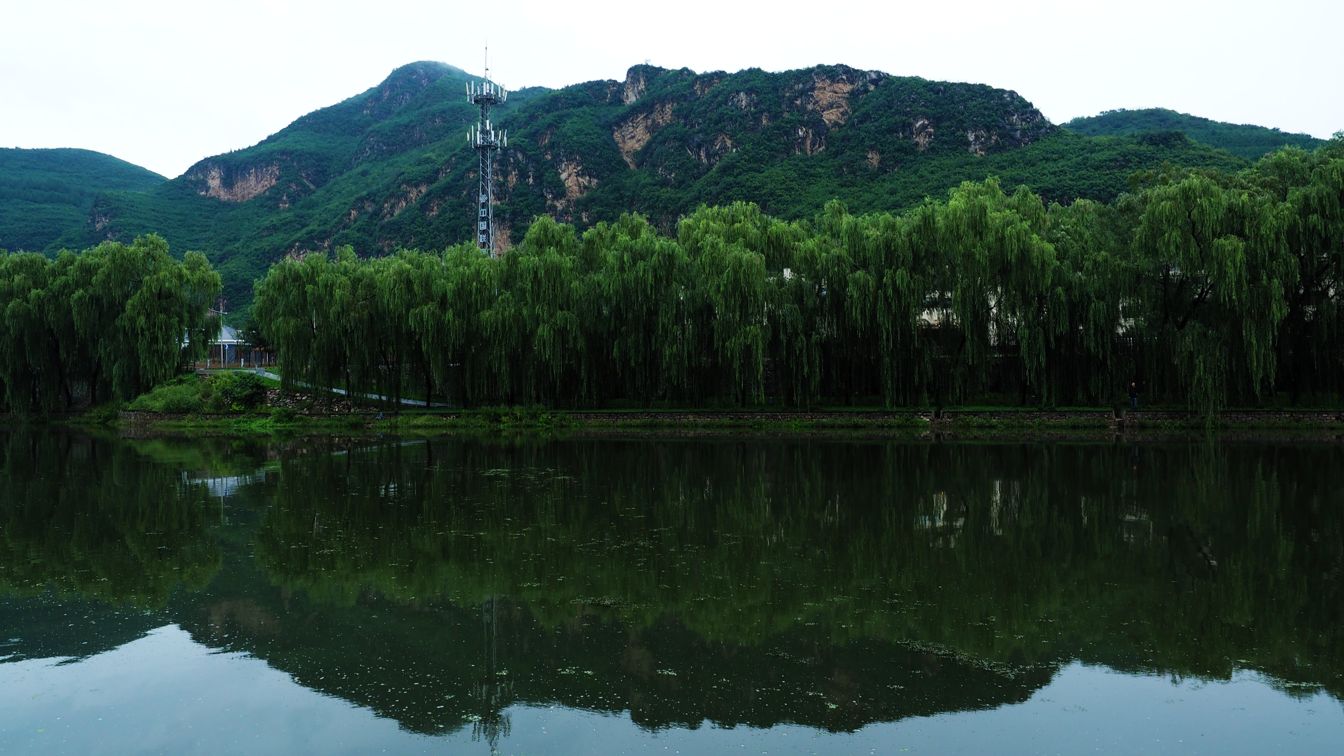 landscape photography of lake surrounded with trees