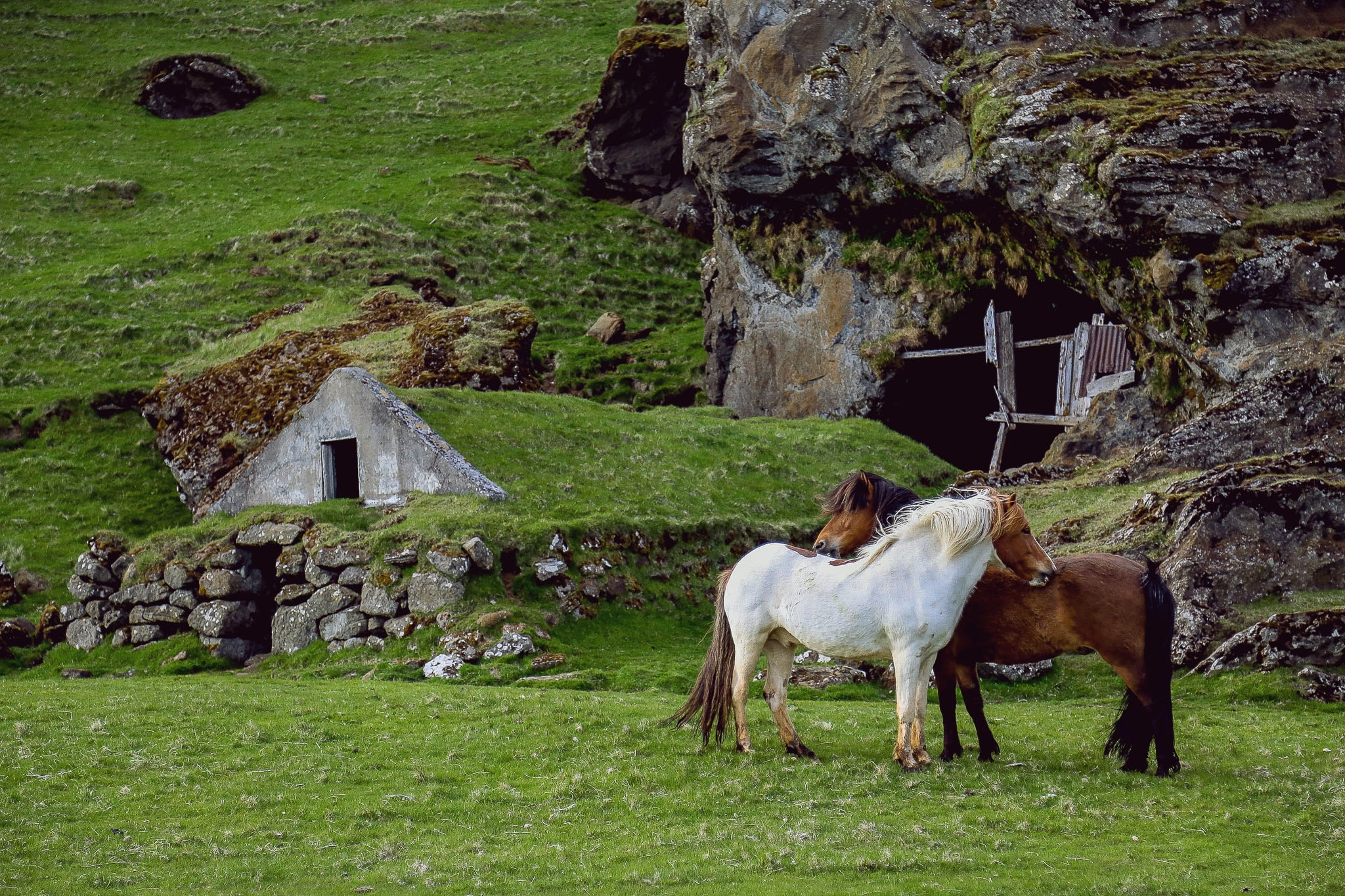 Two horses standing close to each other near a structure built of stone and an entrance to a cave
