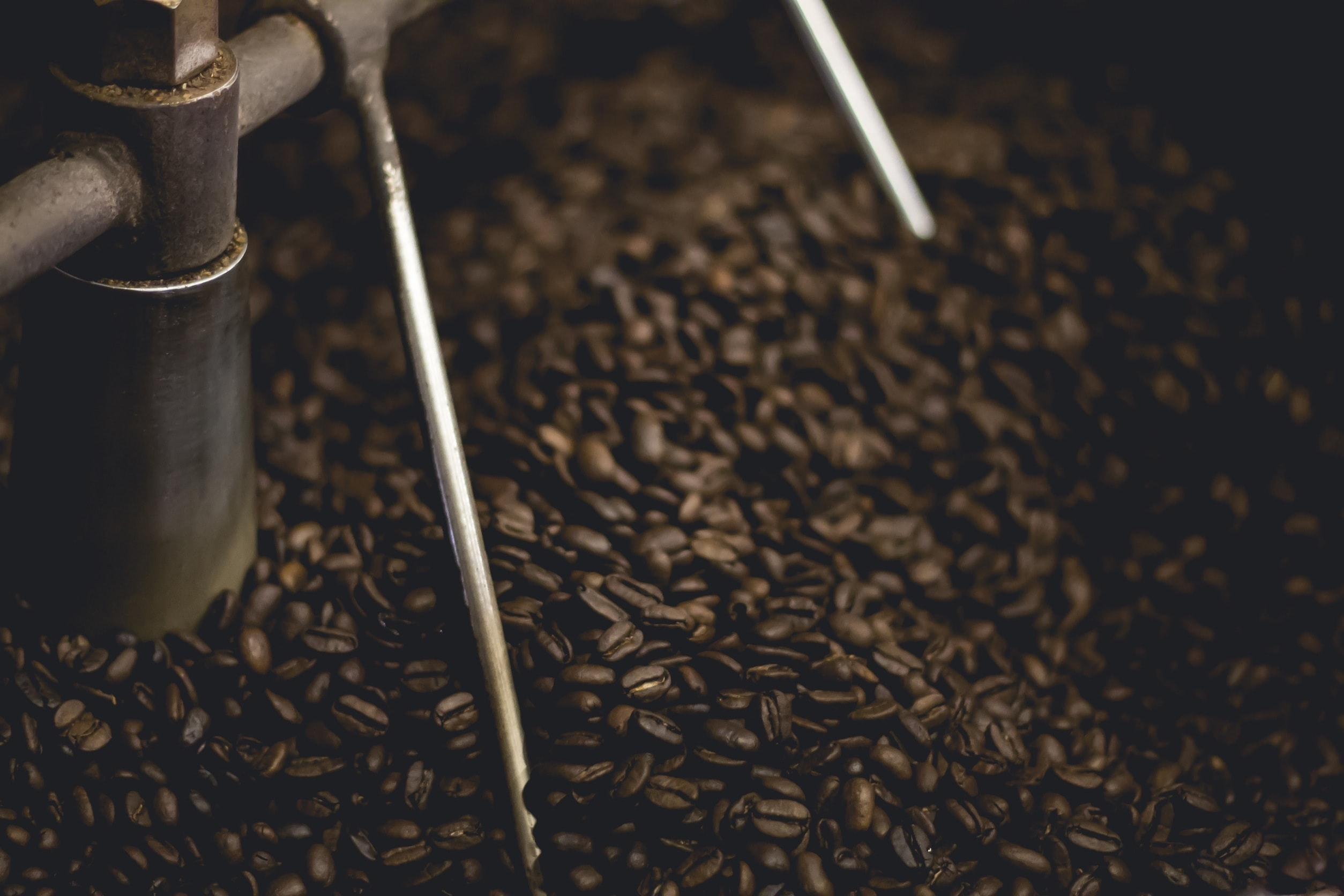 Large amount of whole brown coffee beans in a metal machine