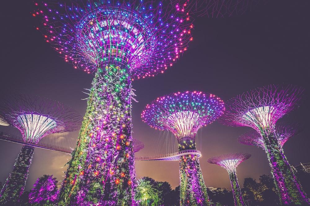 multicolored lights on posts