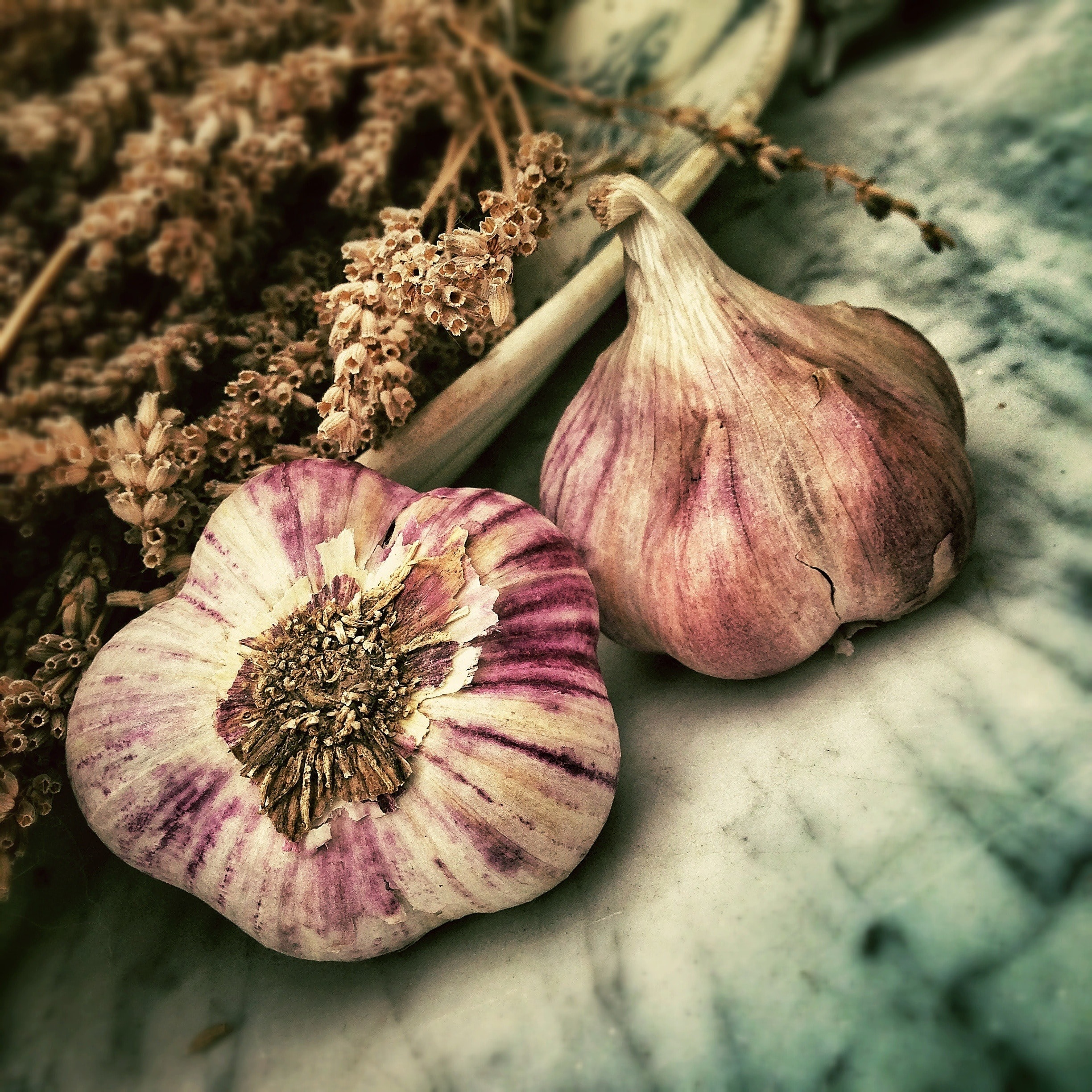 Bulbs of garlic and dried herbs on a table