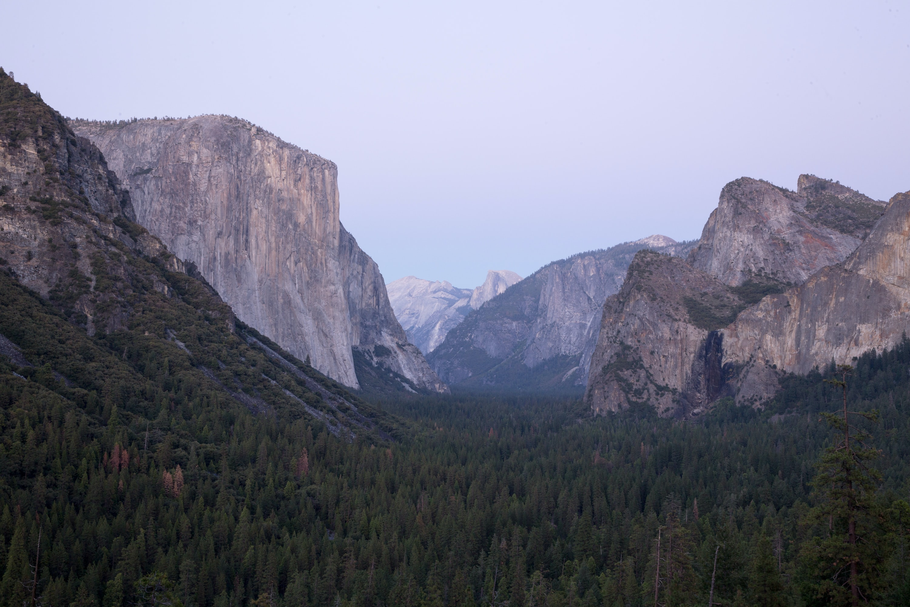 The bottom of Yosemite Valley on a breezy morning