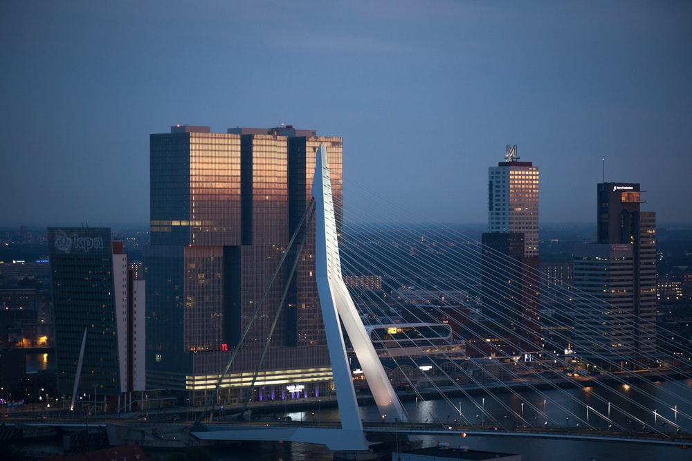 white full-suspension bridge near curtain wall buildings at night time