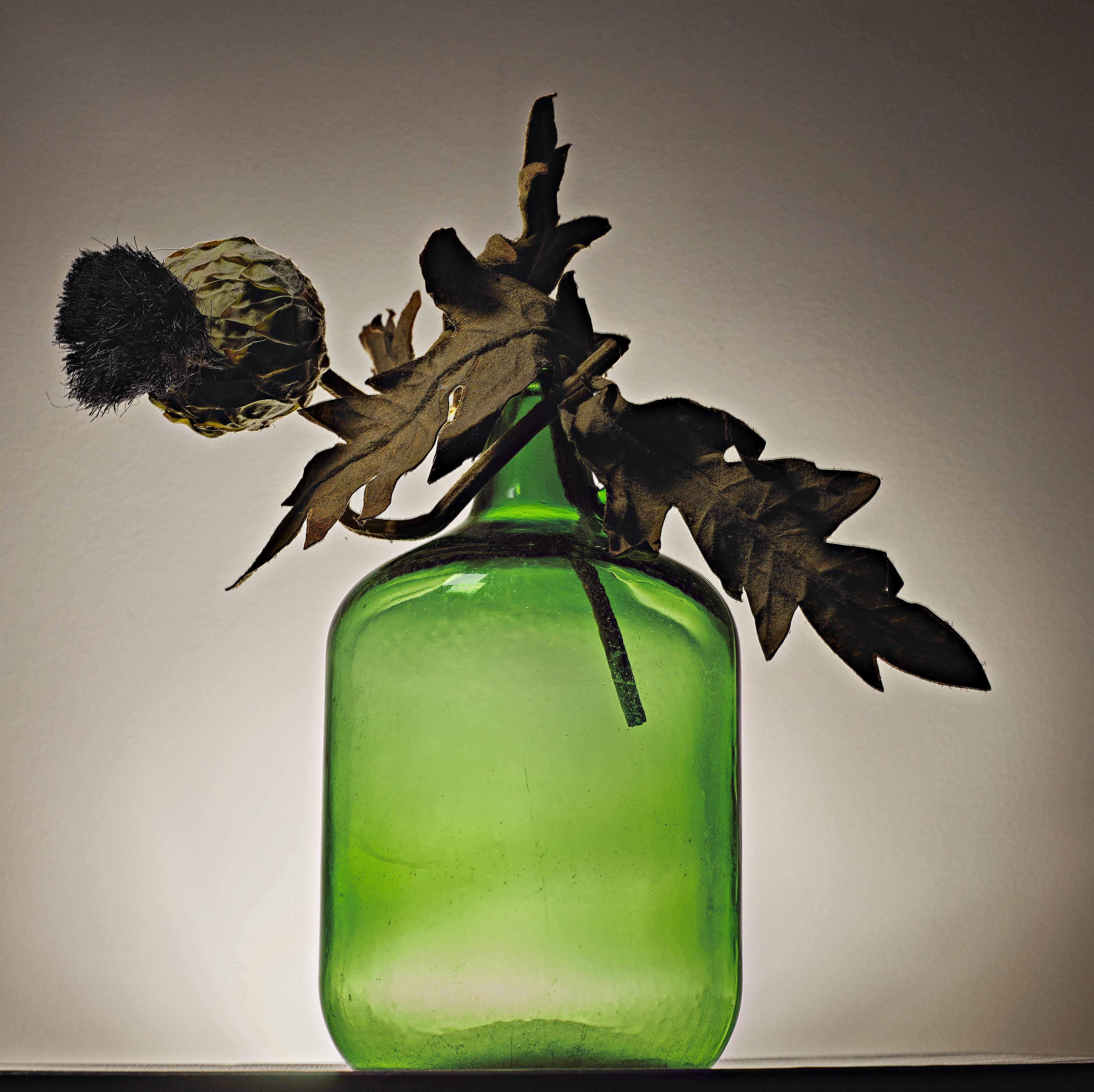 dried brown leaf on green glass bottle