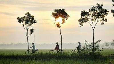 three person riding bikes on green grass field indonesia zoom background