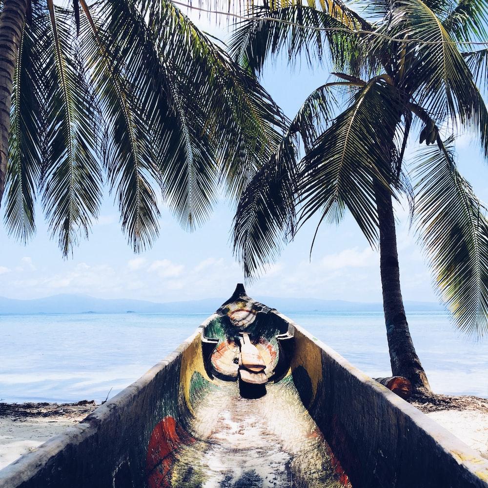 gray canoe in front of ocean