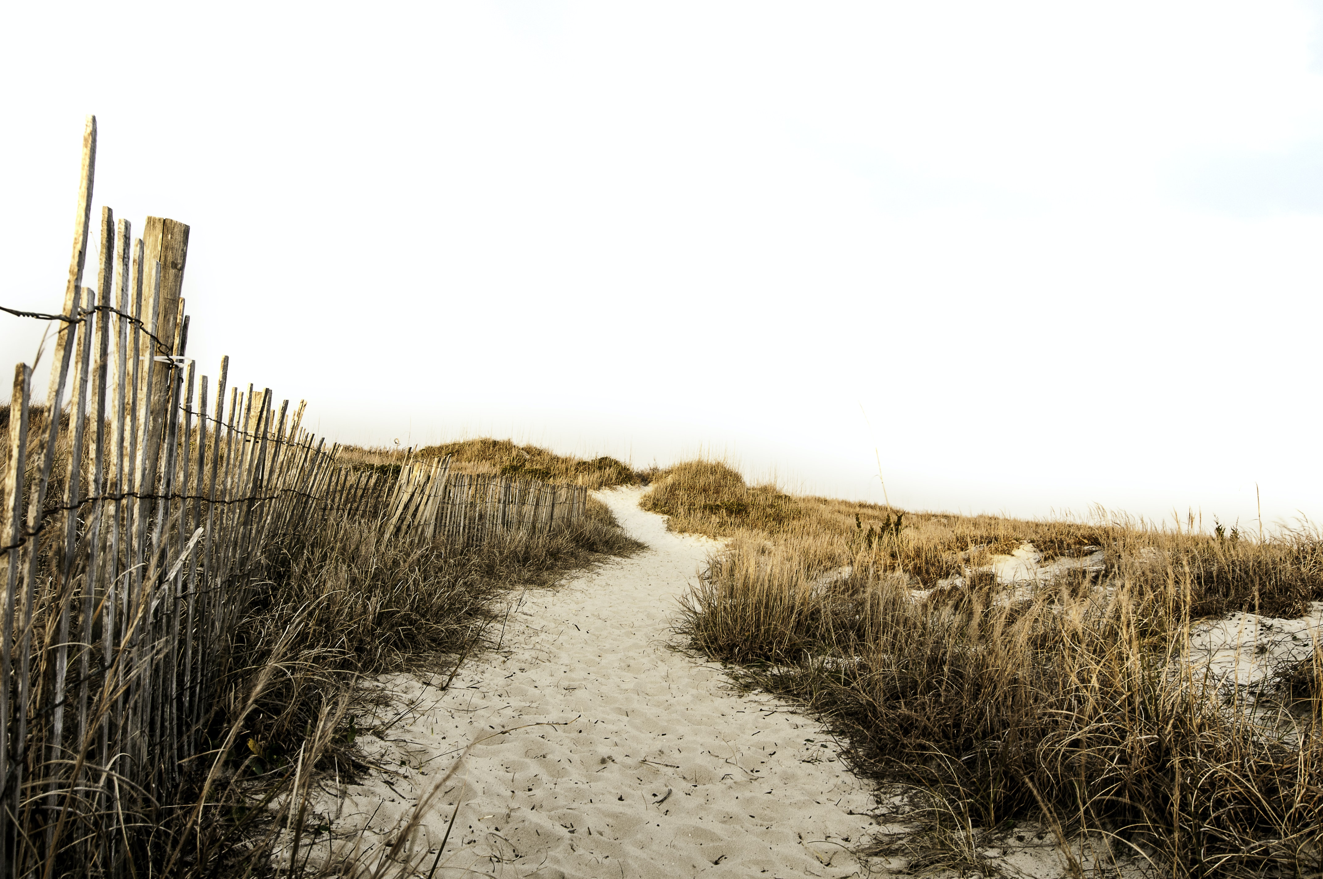 Excellent landscape featuring sand dune and dry grass at Atlantic beach