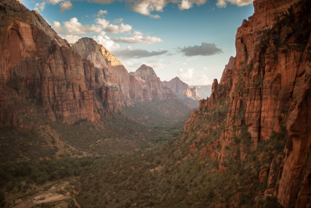 100 Zion National Park Pictures United States Download