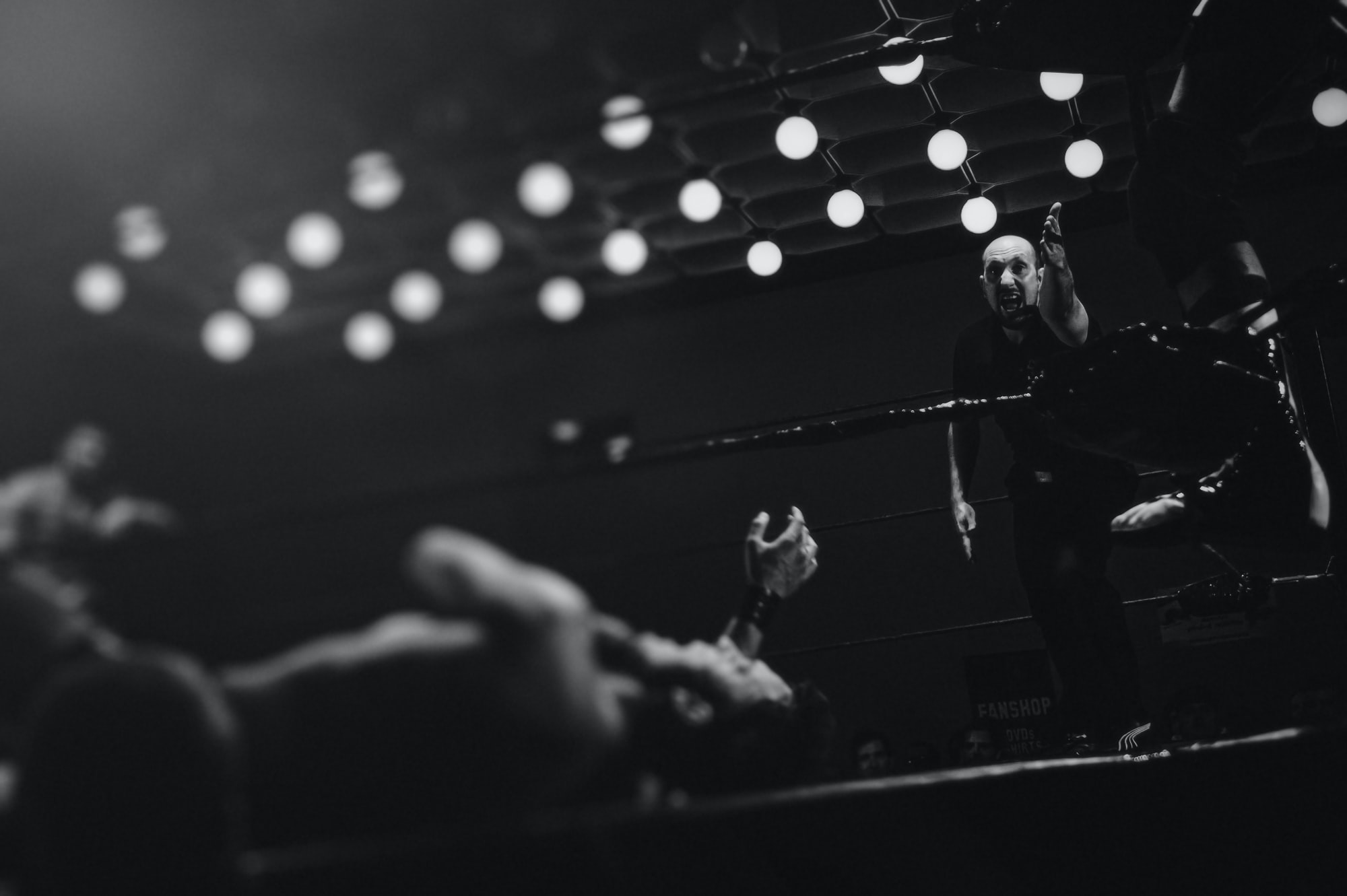 A referee presiding over a wrestling match in a ring in KD Ládví