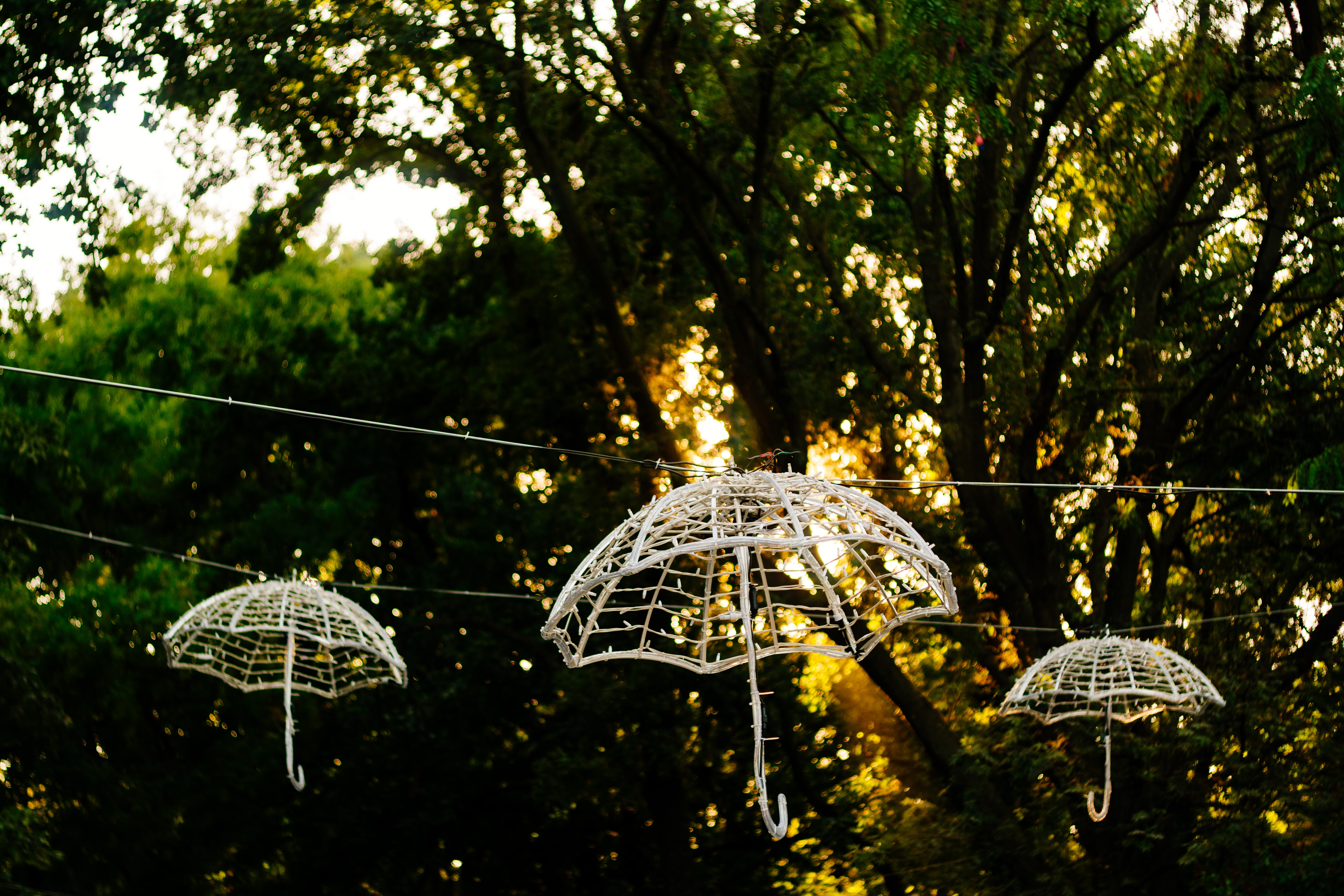 three white umbrella frame hanging decors hangs on string near tree