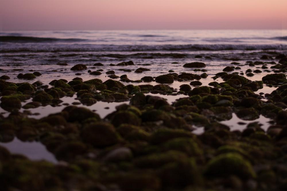 rocks on seashore along ocean wave