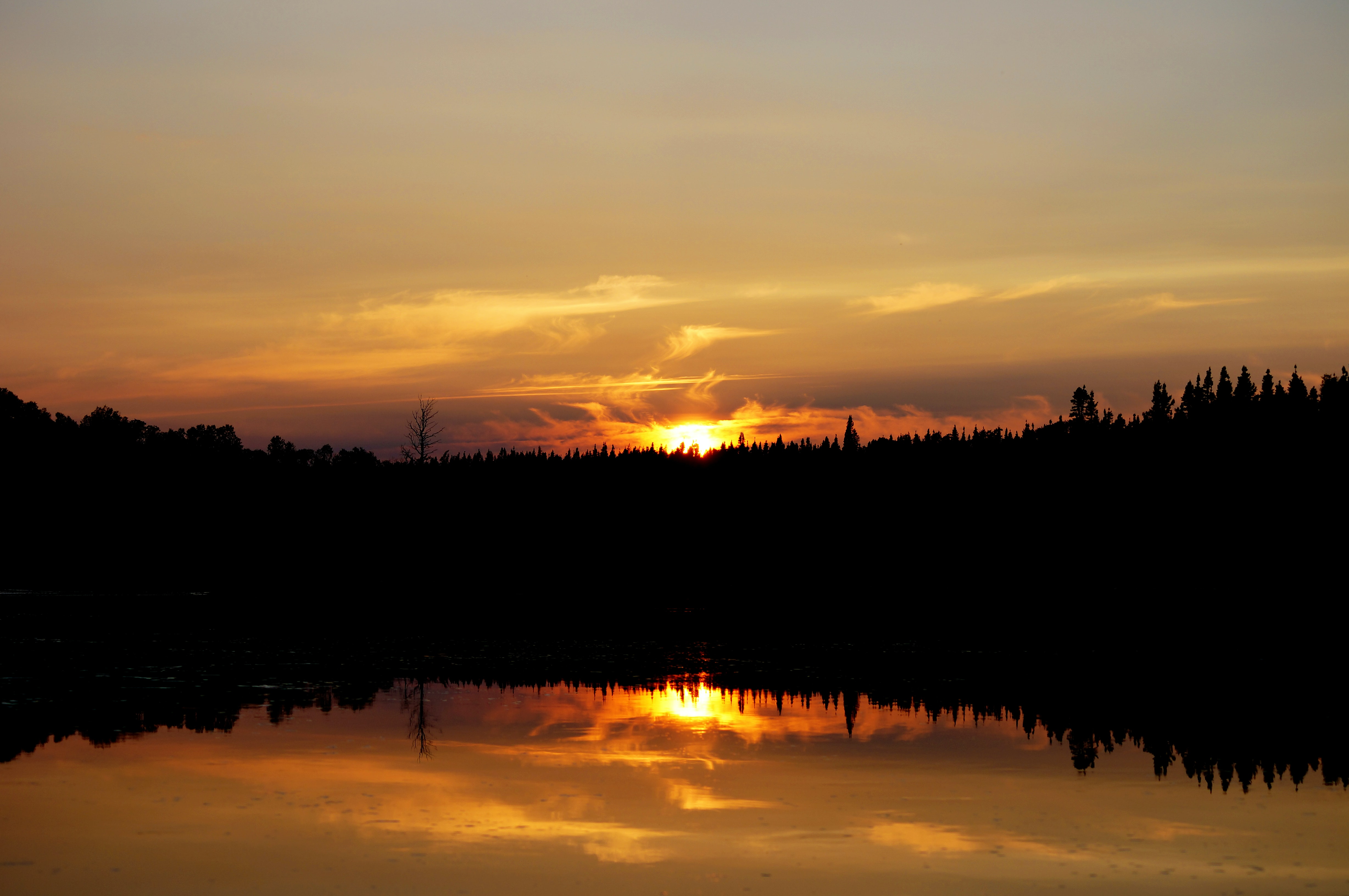 Golden sunset in Gander Bay with forest reflection in the lake.