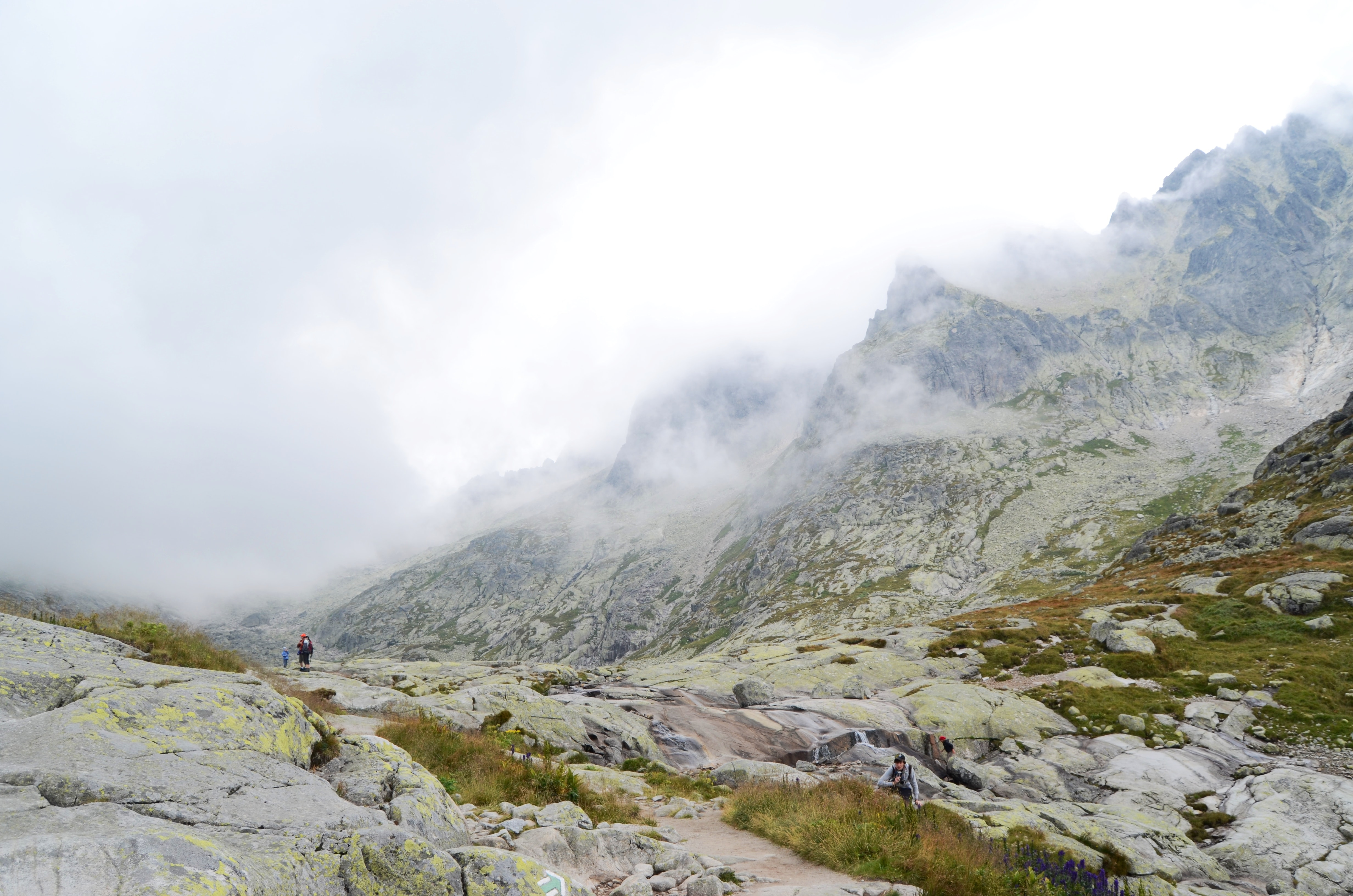 Rocky hiking paths by mossy hillsides and foggy mountains